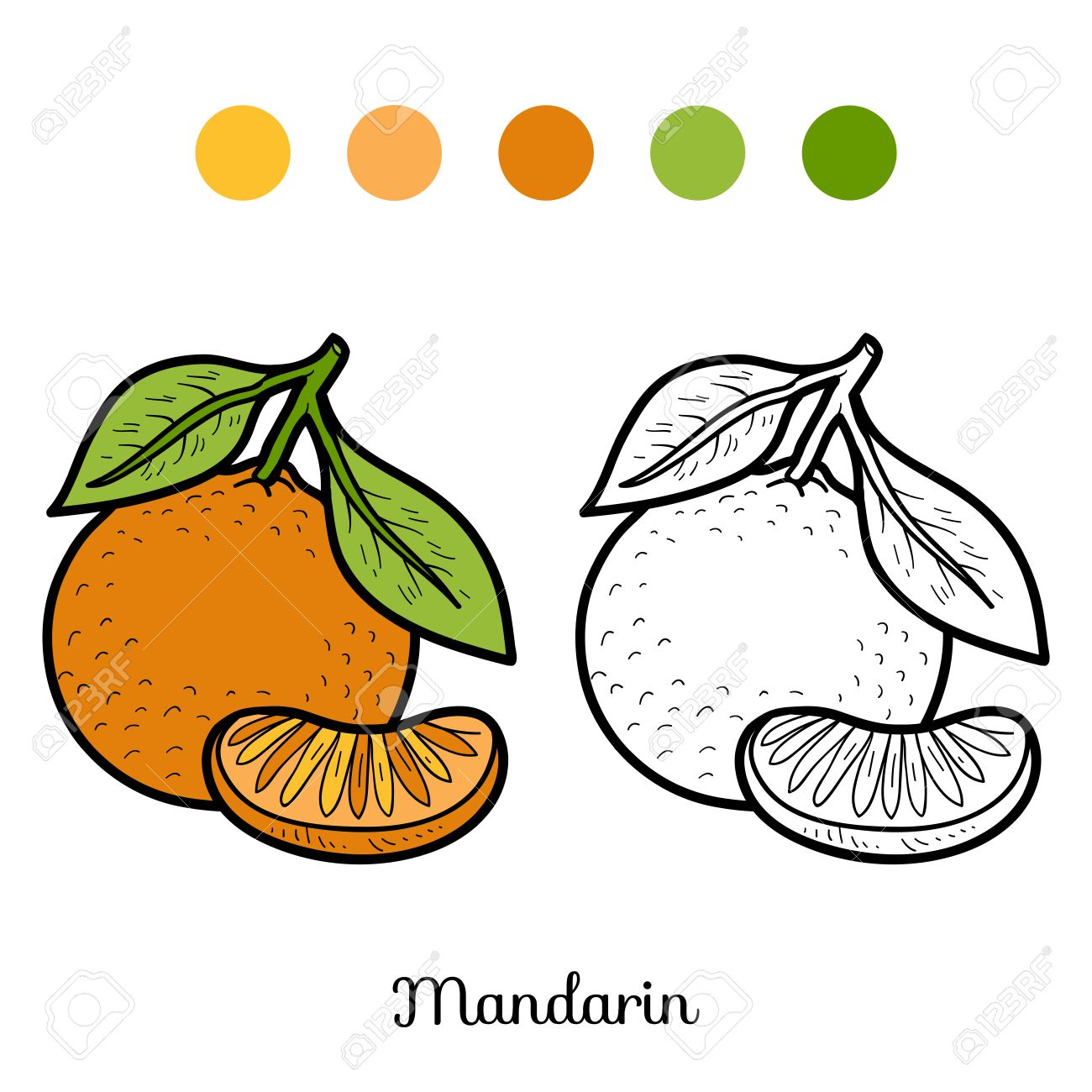 Coloring Book For Children Fruits And Vegetables Mandarin Stock Vector