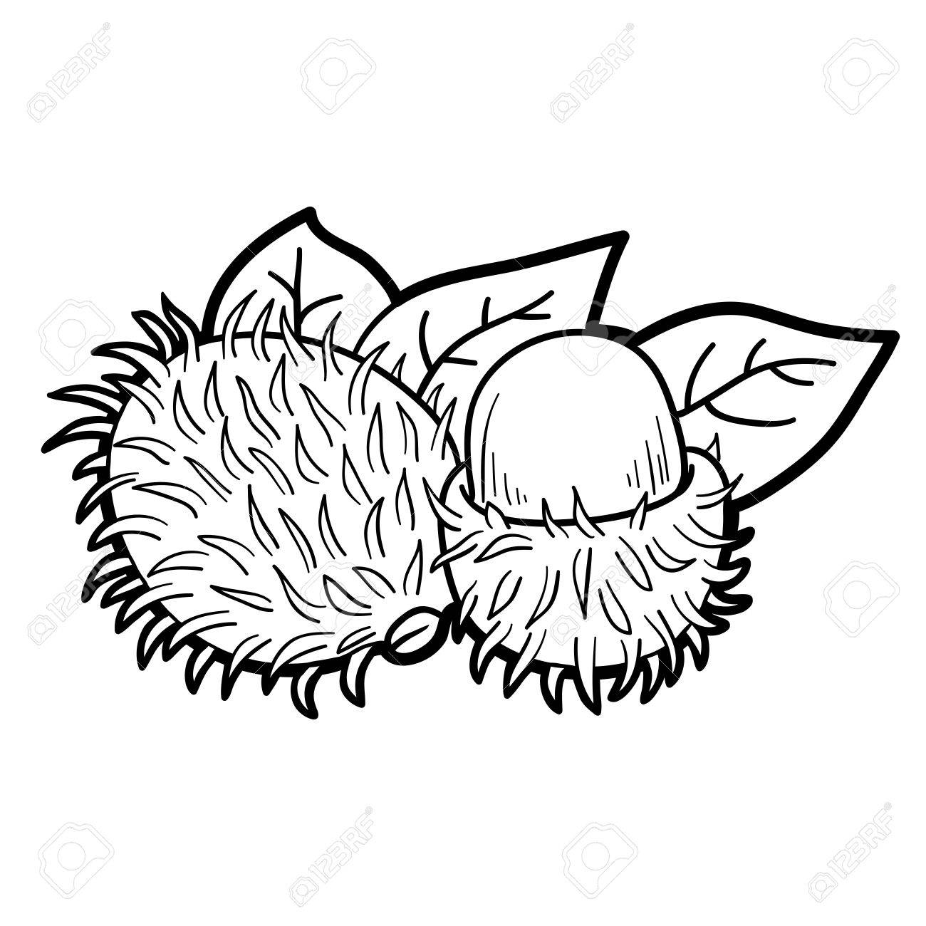 Coloring book game for children: fruits and vegetables (rambutan)