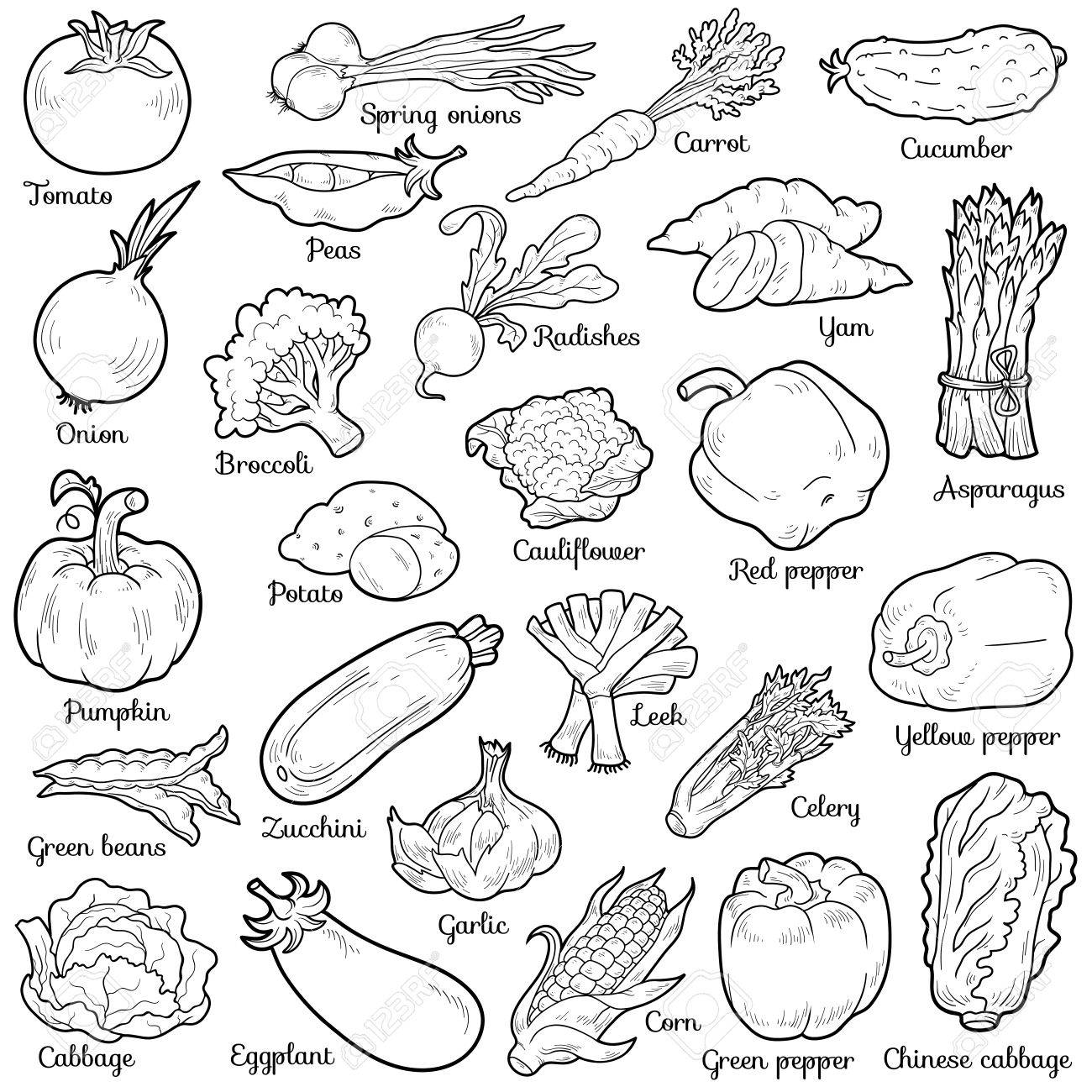 colorless set with vegetables vector cartoon stickers for
