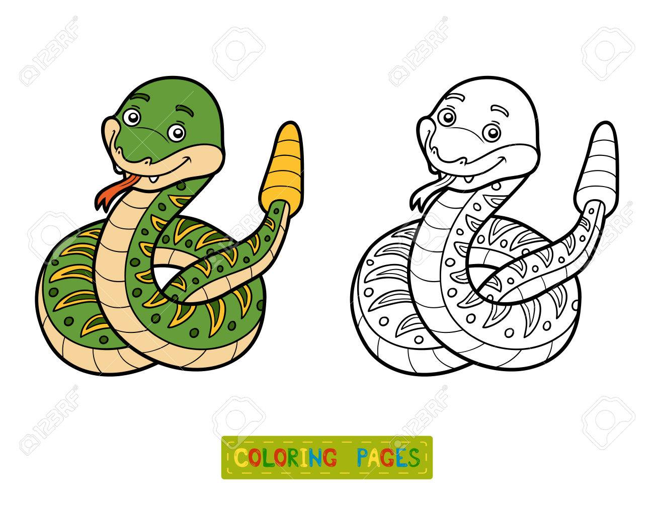 Libro De Colorante Para Los Niños La Serpiente De Cascabel