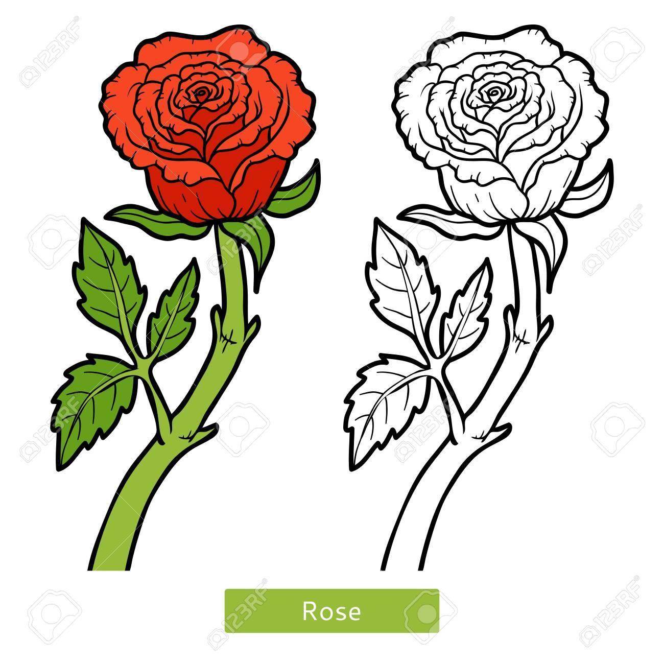 Livre A Colorier Pour Les Enfants Fleur Rose Clip Art Libres De Droits Vecteurs Et Illustration Image 64872652