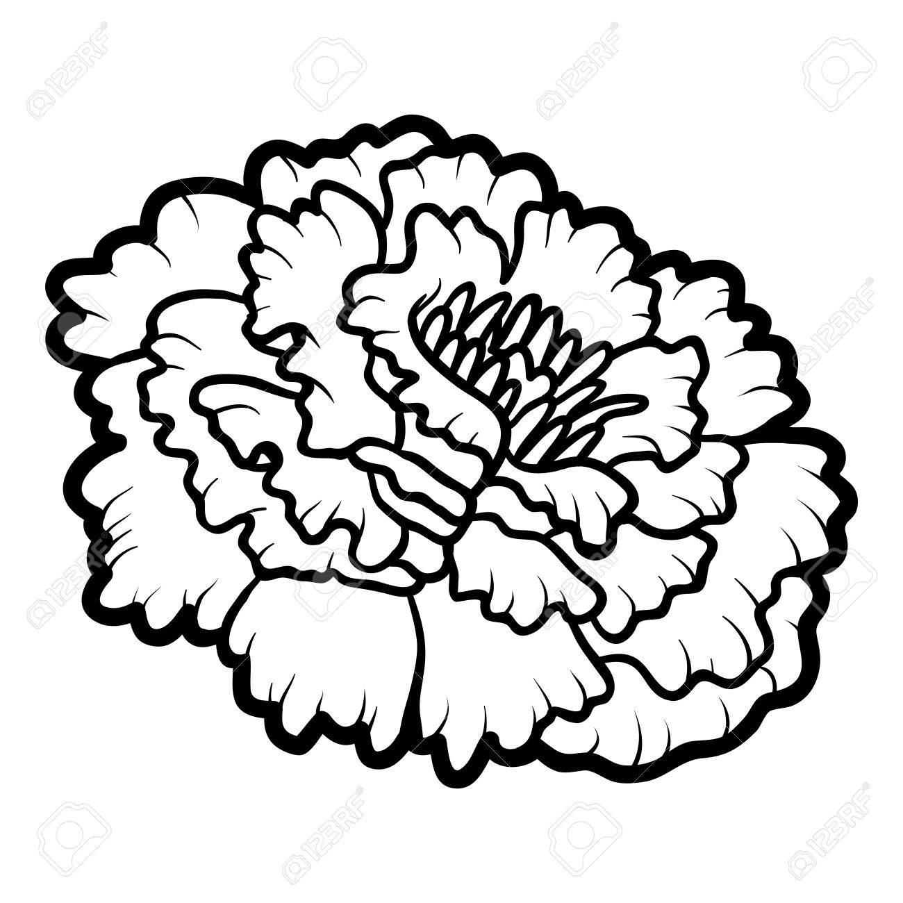 Coloring Book For Children, Flower Marigold Royalty Free Cliparts ...