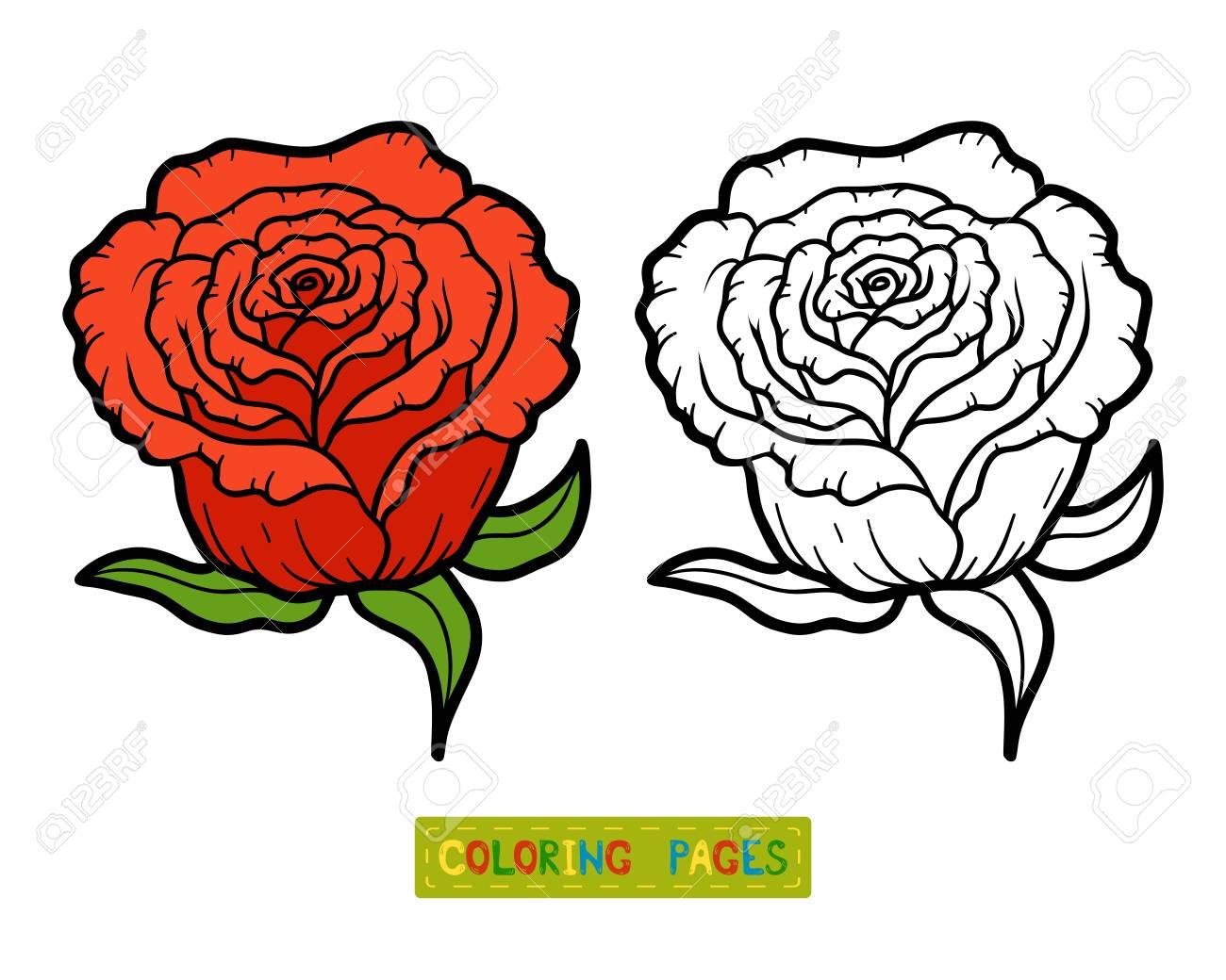 バラの花の子供のための塗り絵のイラスト素材ベクタ Image 66627756