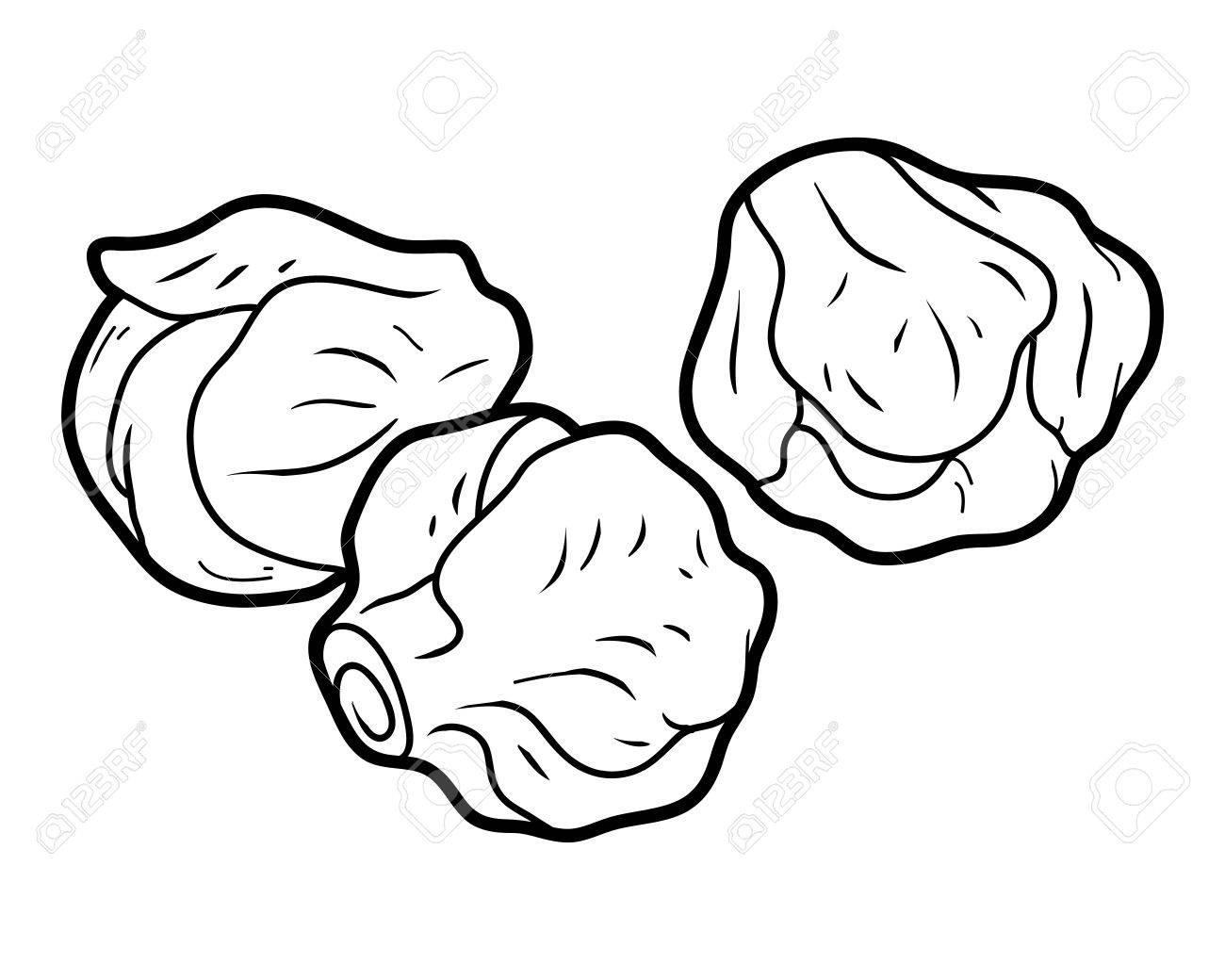 子供用の野菜芽キャベツの塗り絵のイラスト素材ベクタ Image 67149883