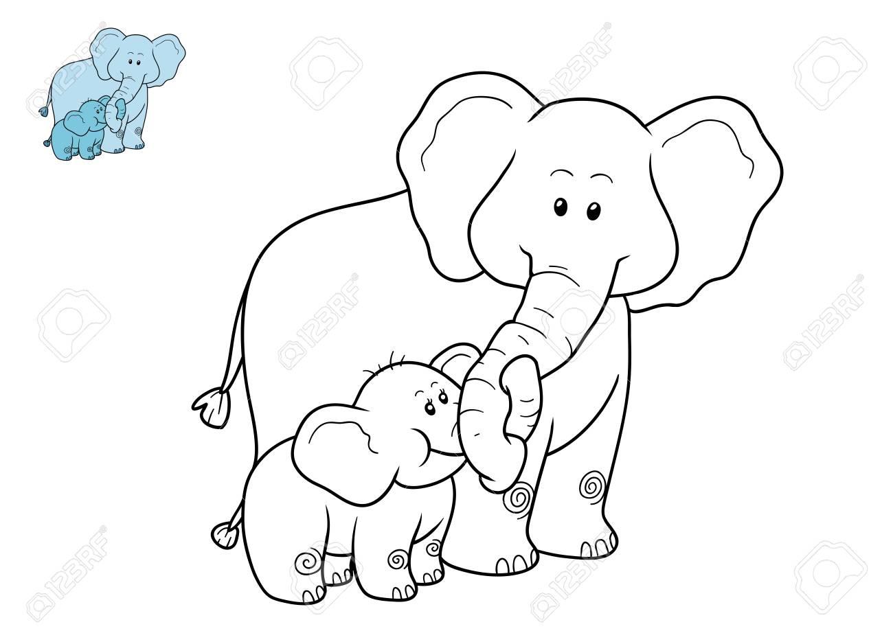 Libro Para Colorear Para Los Niños, Elefante Fotos, Retratos