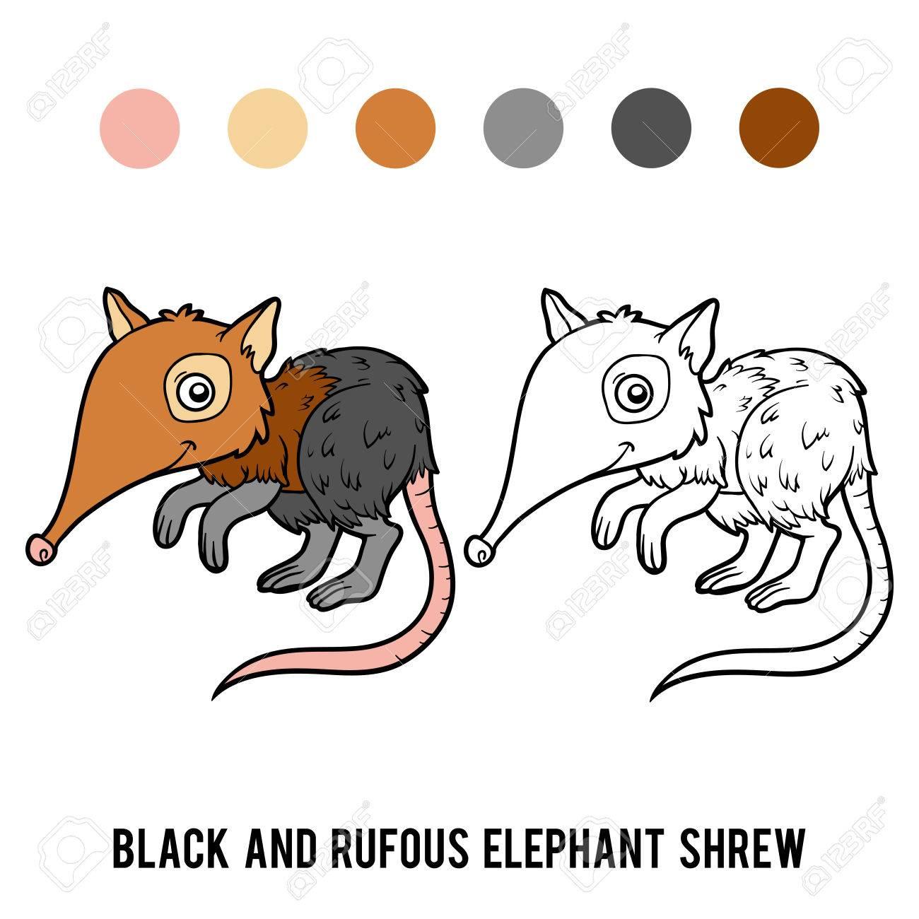 Libro De Colorear Para Niños, Musaraña Elefante Negro Y Rufo ...