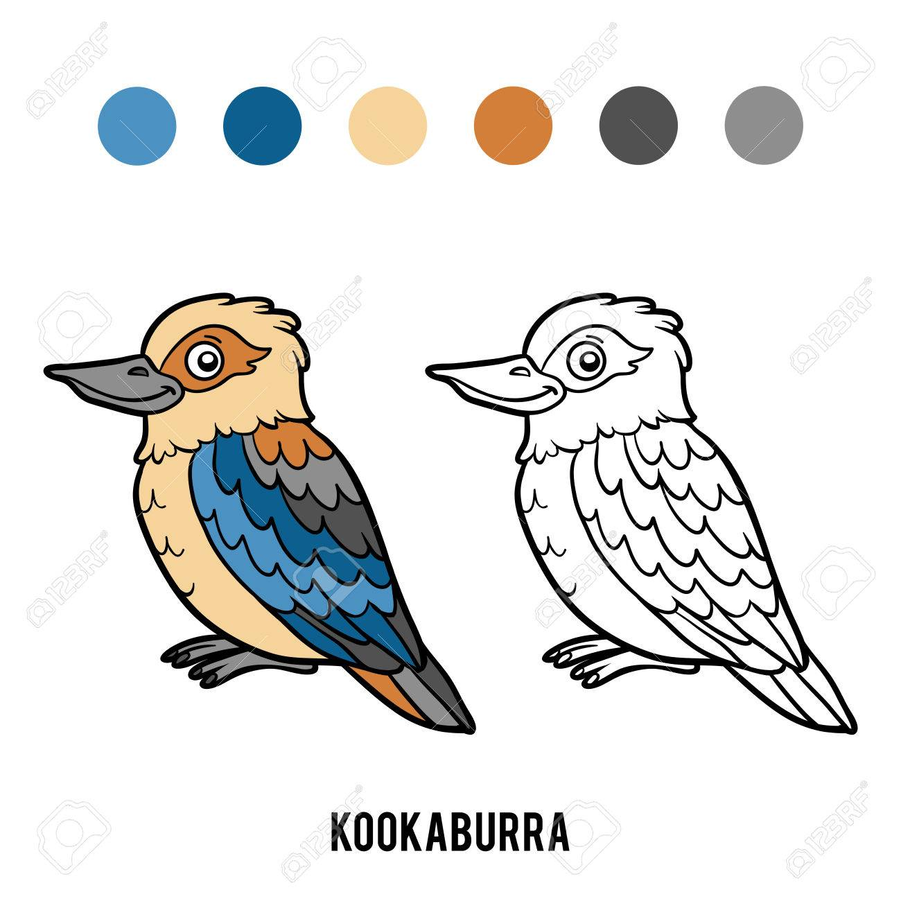 Coloring Book For Children Kookaburra Stock Vector