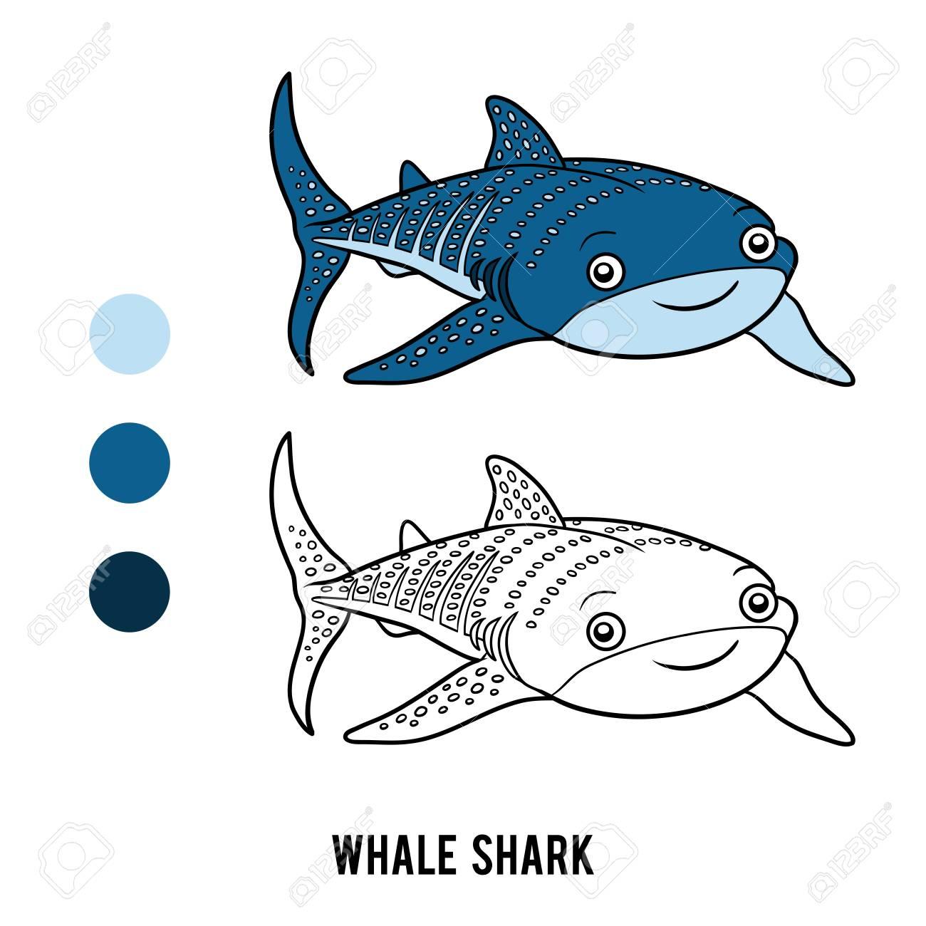 Dibujo Para Colorear Para Niños Tiburón Ballena Ilustraciones