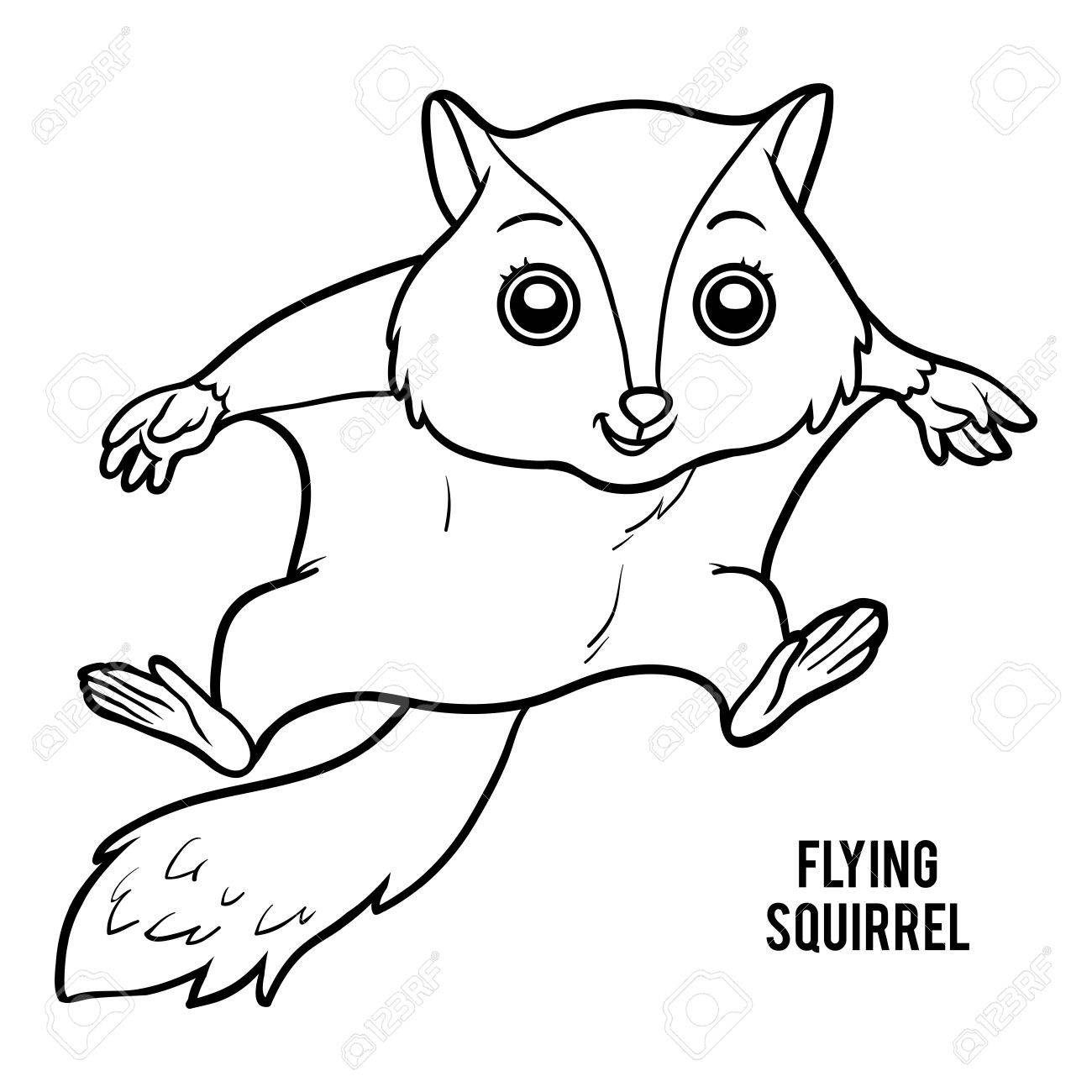 Coloring Book For Children, Flying Squirrel Royalty Free Cliparts ...