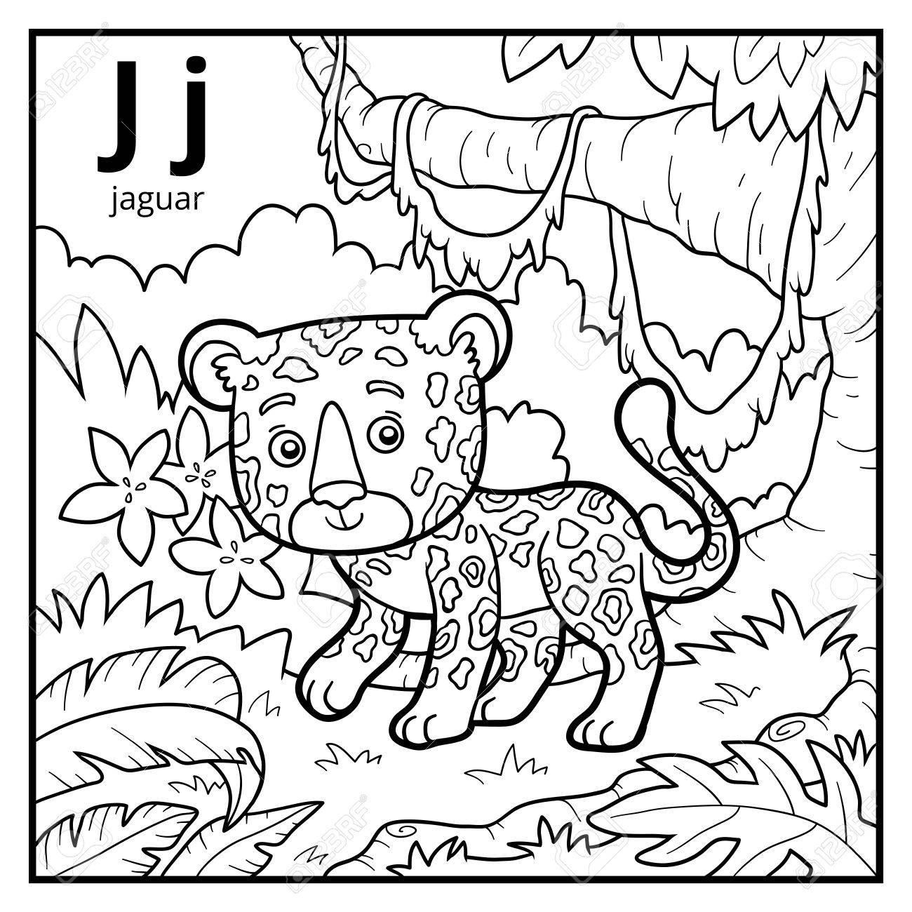 Libro De Colorear Para Niños, Alfabeto Incoloro. Letra J, Jaguar ...