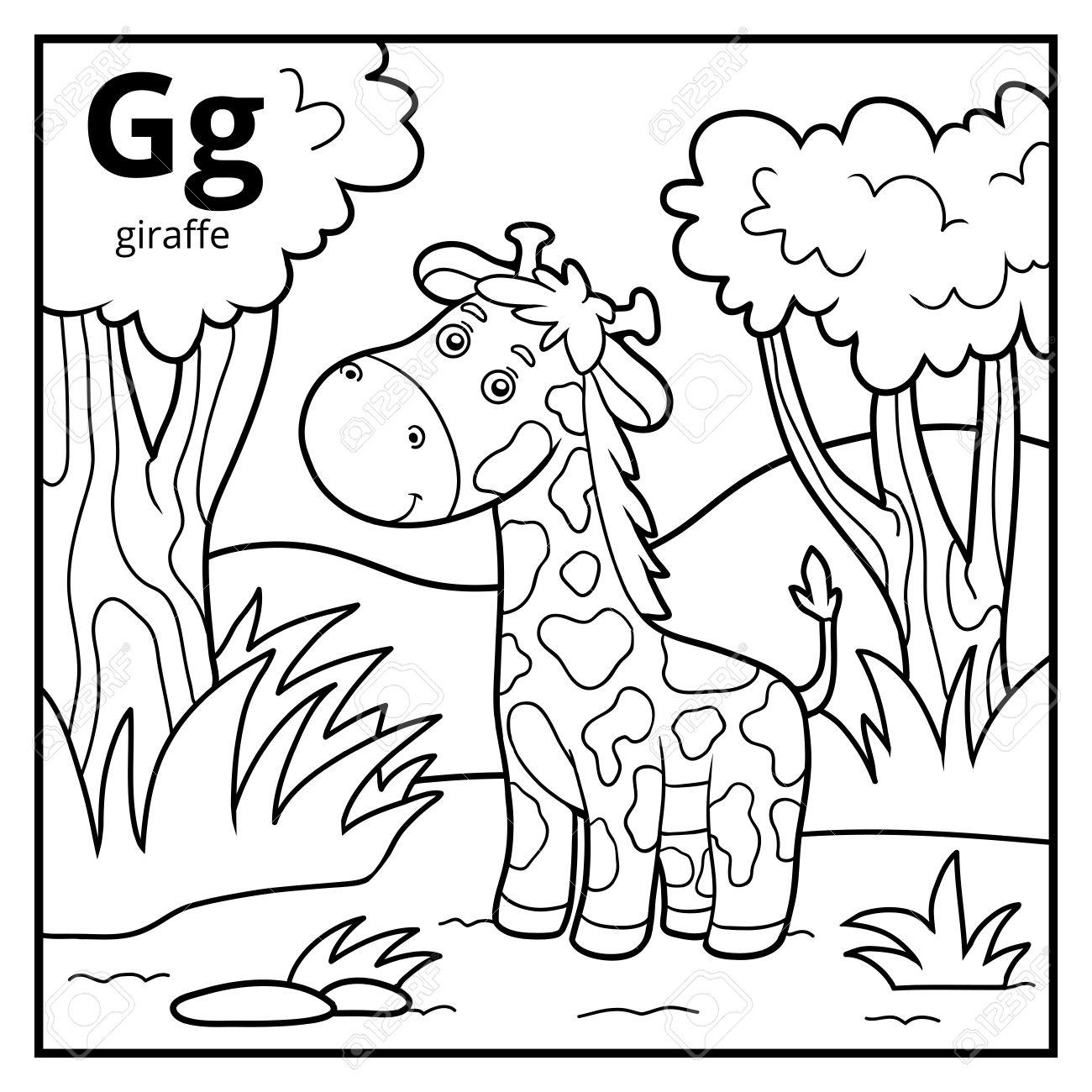 Coloring Book For Children, Colorless Alphabet. Letter G, Giraffe ...