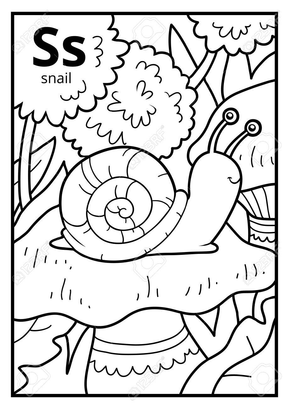 Libro Para Colorear Para Niños, Alfabeto Incoloro. Letra S, Caracol ...