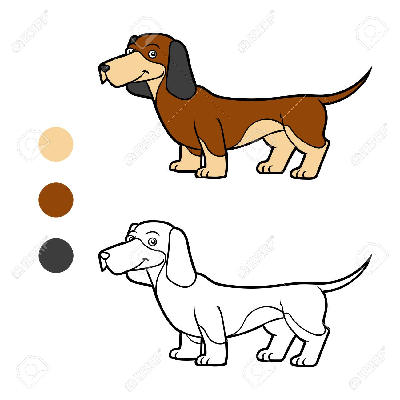 Coloring Book For Children Dog Breeds Dachshund Stock Vector