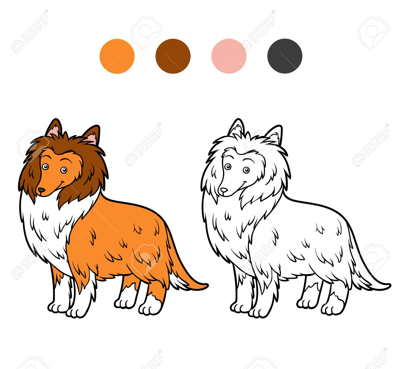 Animal Coloring Book Kids Colored Guide And Black And White