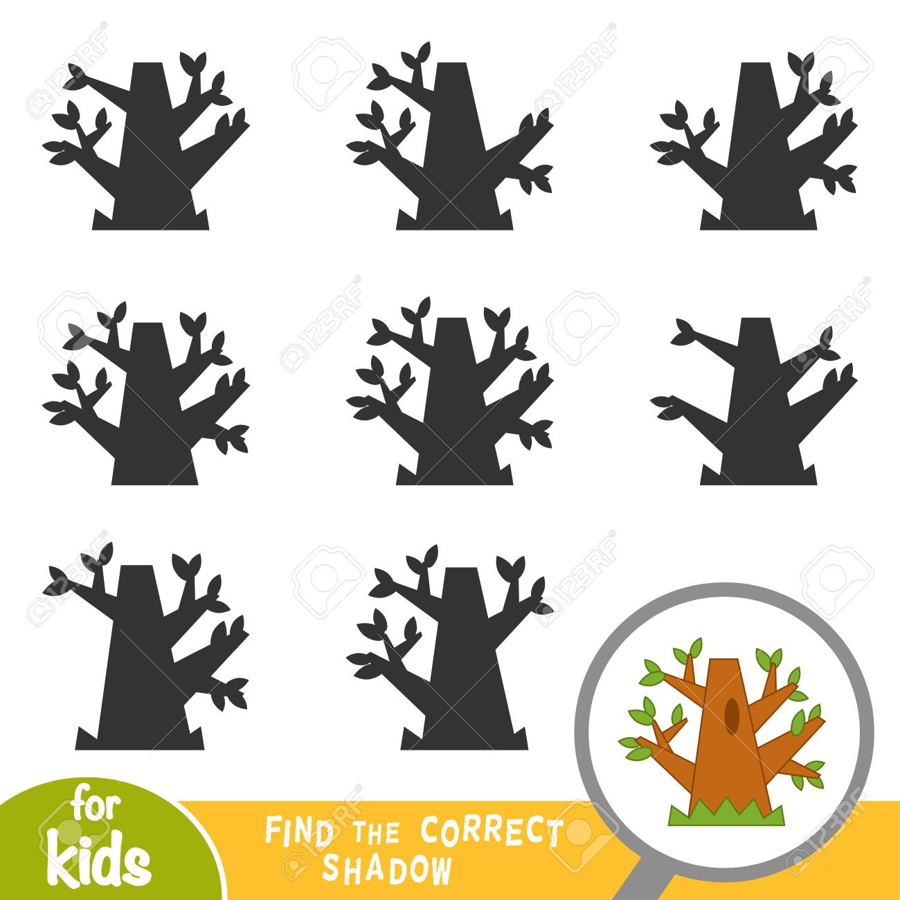 Find the correct shadow, education game for children, Oak tree - 126529678