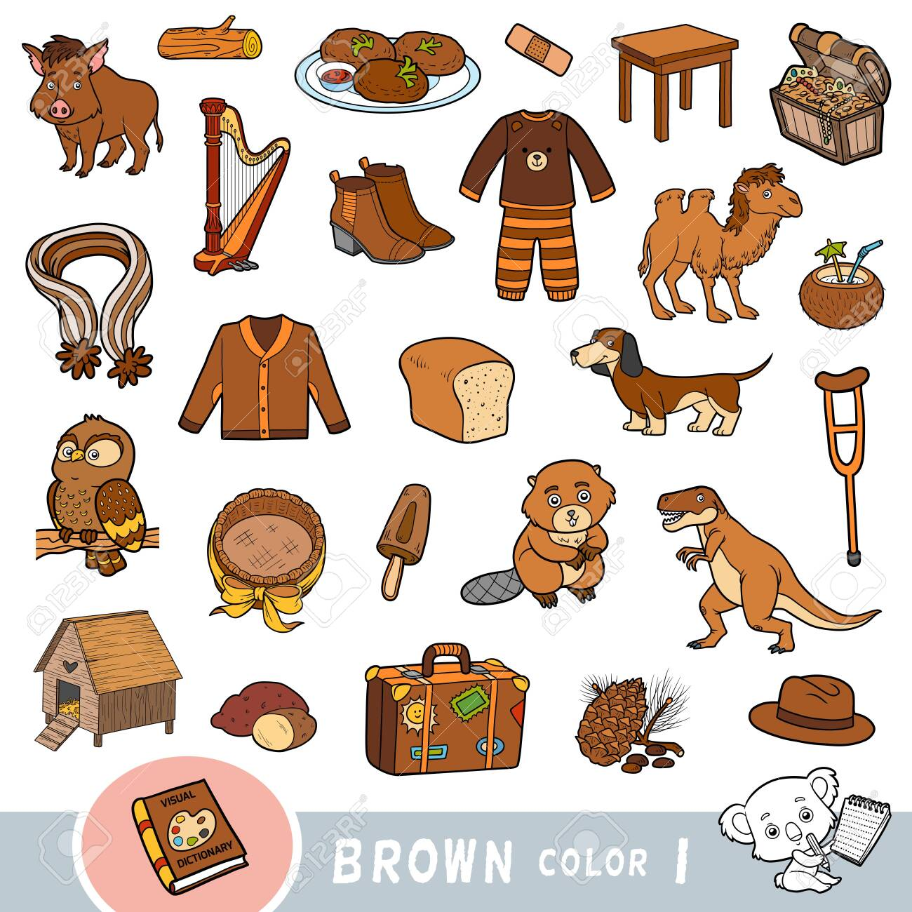 Colorful set of brown color objects. Visual dictionary for children about the basic colors. Cartoon images to learning in kindergarten and preschool - 136781450