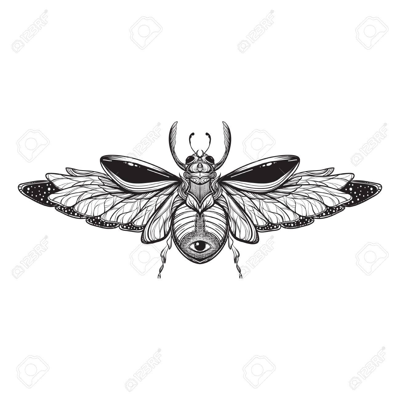 beetle bug tattoo drawing scarab bug illustration royalty free