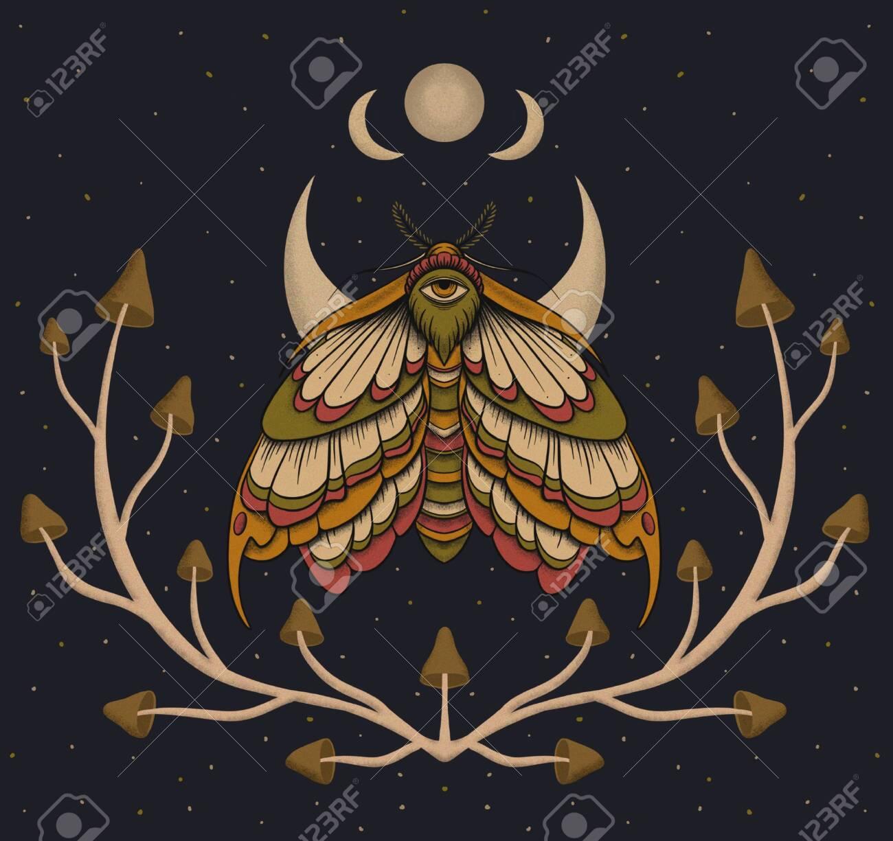 Eyed hawk-moth colored illustration, drawing, engraving, ink, line art - 139090600