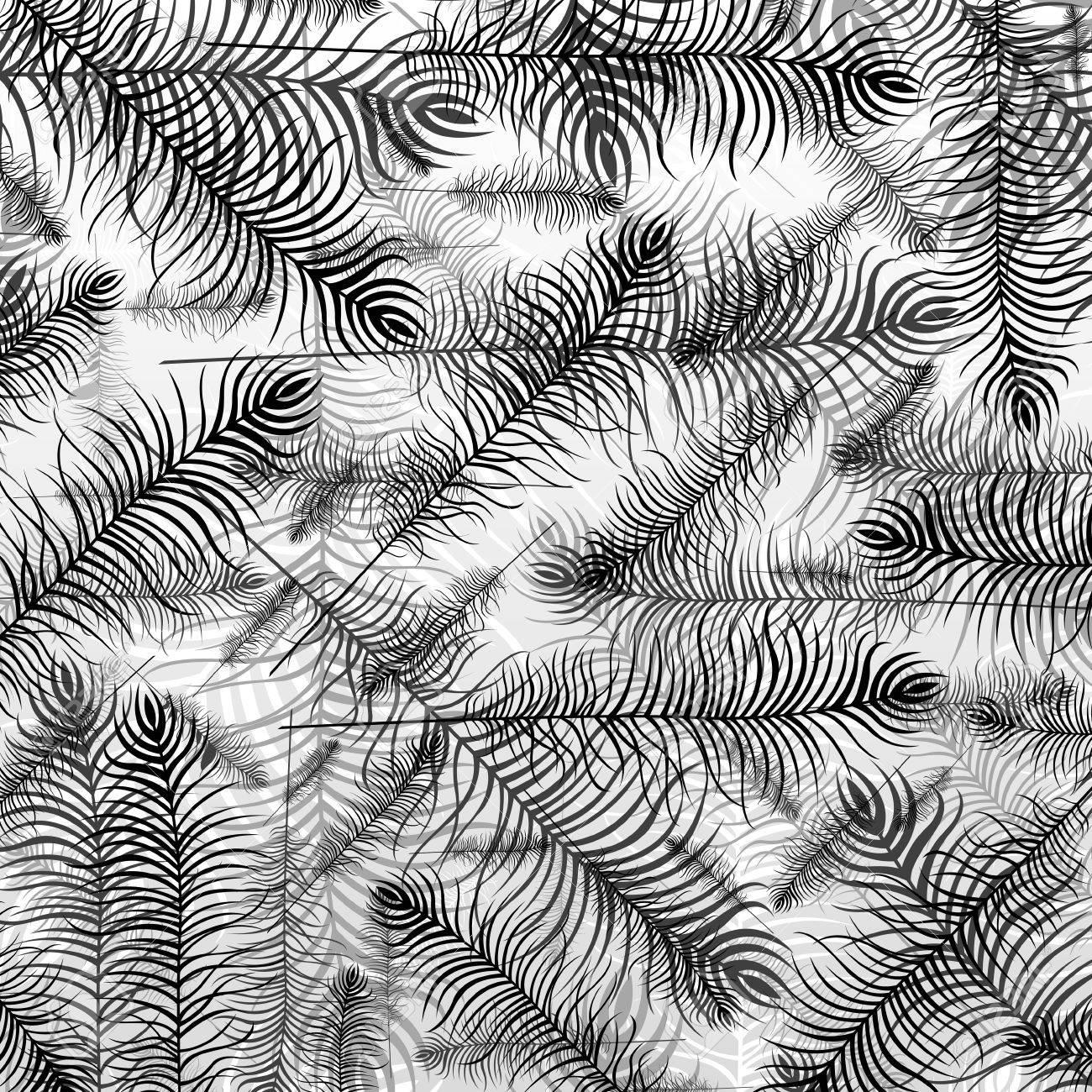 Peacock bird feathers background illustration Stock Vector - 11649857