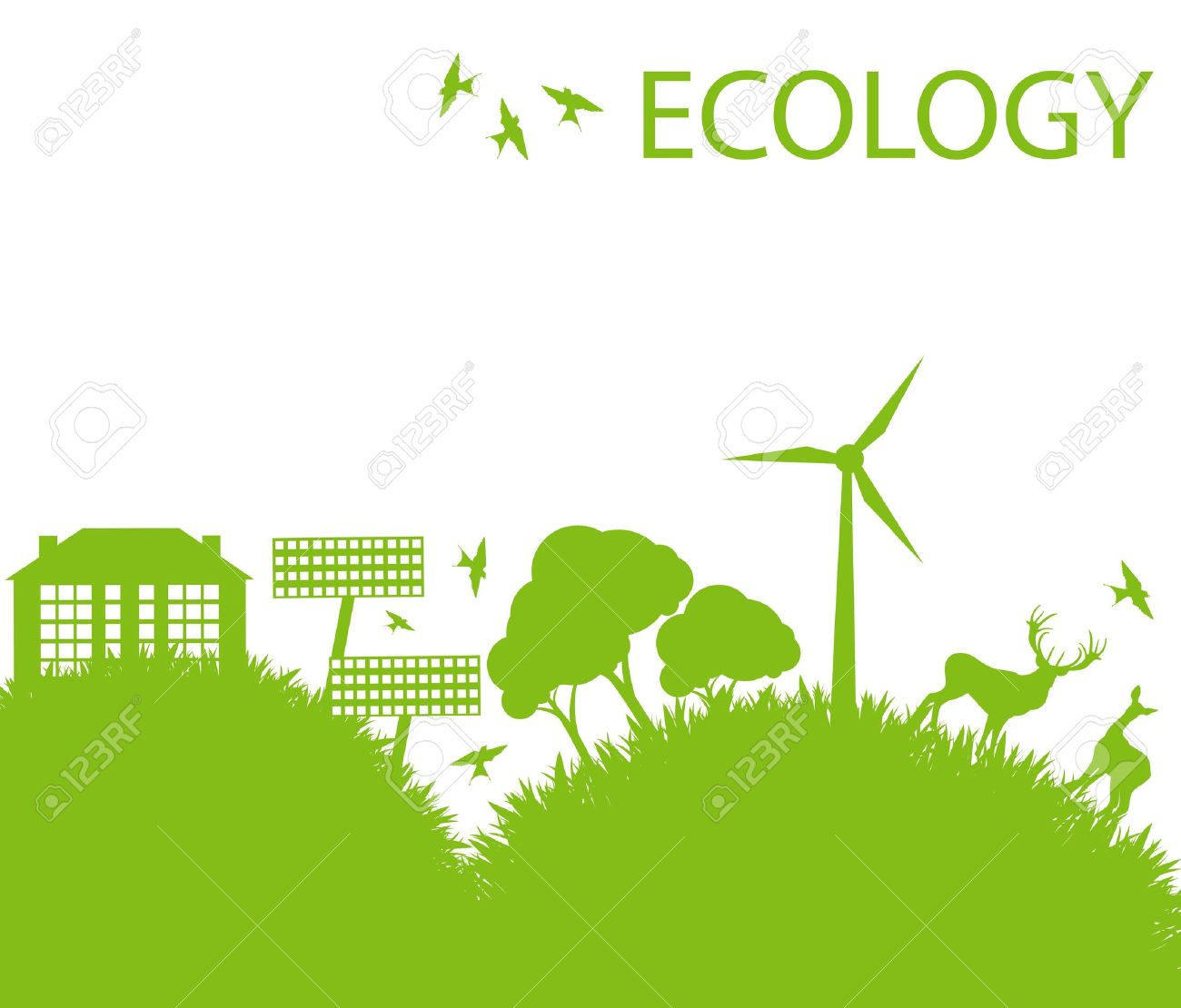 ecology projects