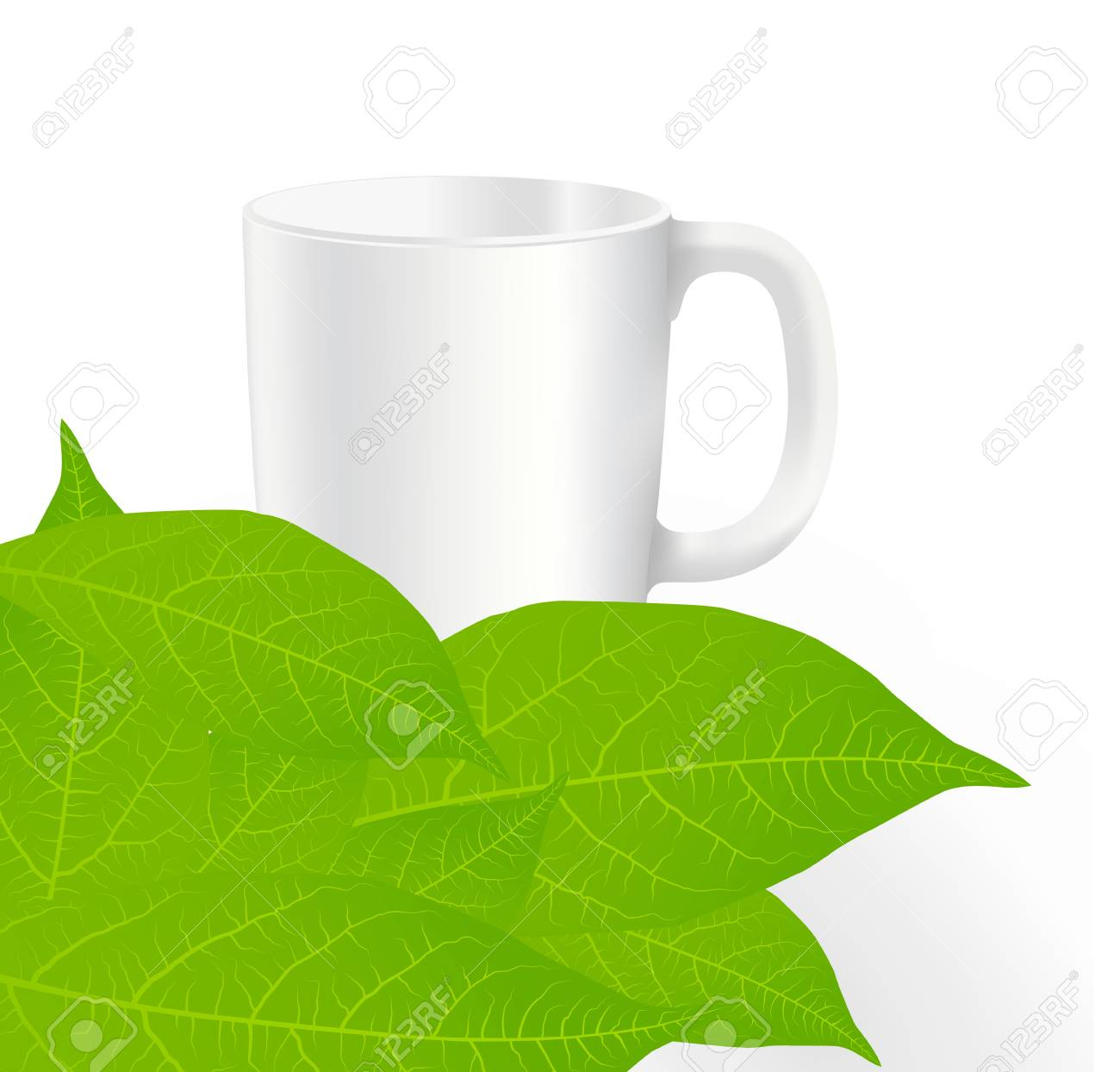 Fresh, green tea leaves on a white background with cup vector Stock Vector - 12931407
