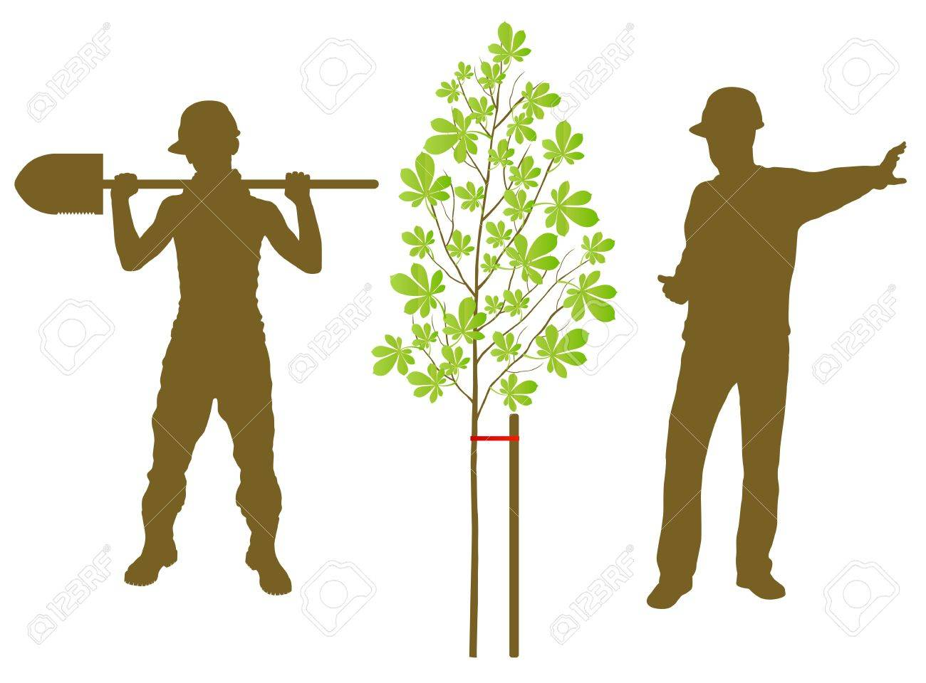 Chestnut tree plant vector background with worker and gardener for poster Stock Vector - 13820794
