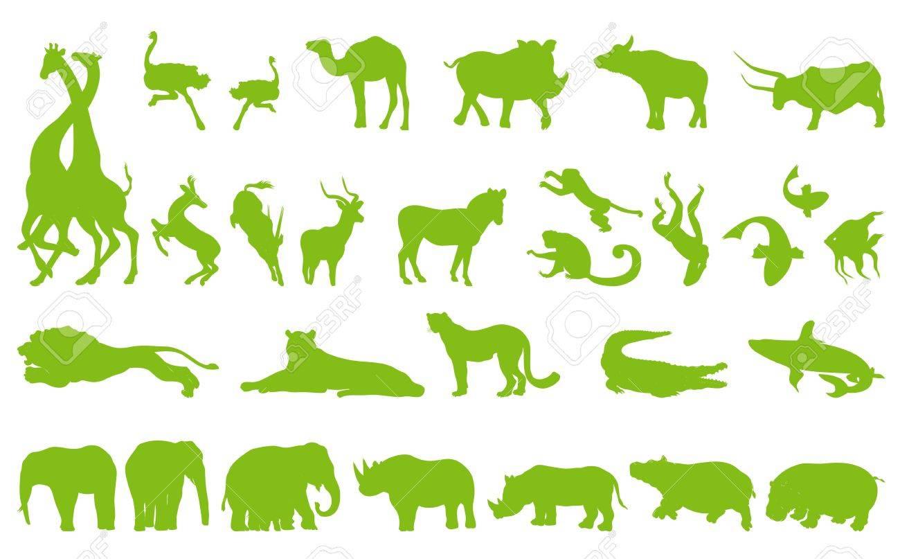 アフリカの動物コレクション背景イラスト ポスター セット ロイヤリティ