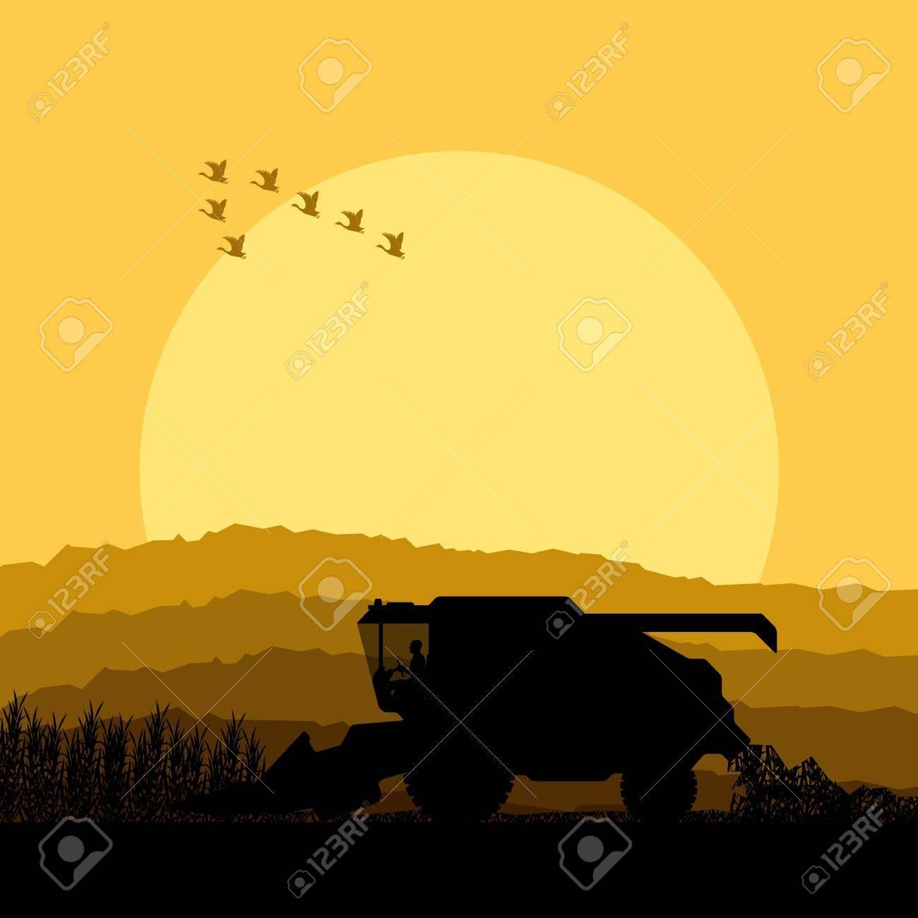 Combine harvesting crop in grain fields background vector illustration Stock Vector - 16289094