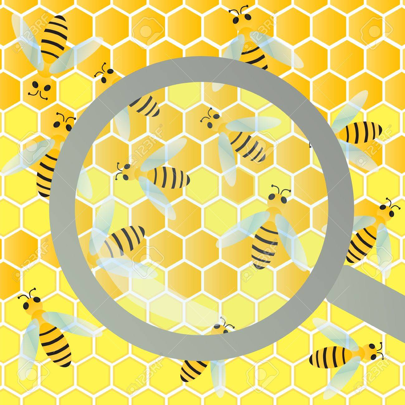 Bees hive and wax honeycomb under magnifier glass inspection illustration background vector Stock Vector - 18581070
