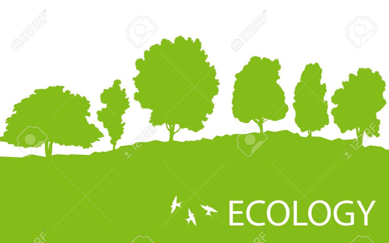Ecology Concept Detailed Forest Tree Illustration Vector Background ...