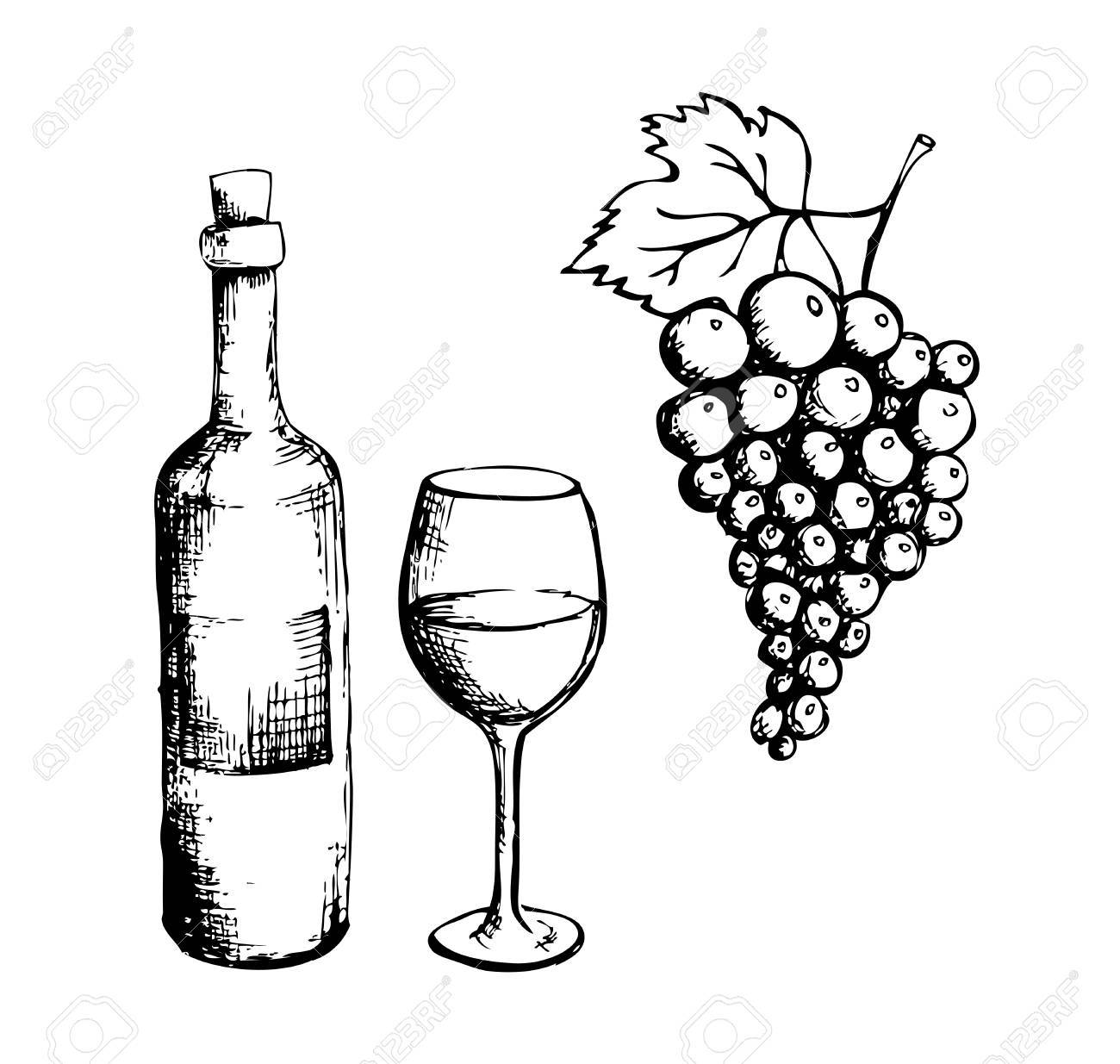 Sketch Of Wine Bottle Glass And Grapes Royalty Free Cliparts