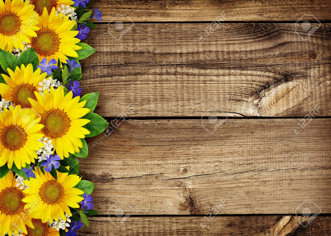 Sunflowers And Wild Flowers Border On Wooden Background Stock Photo