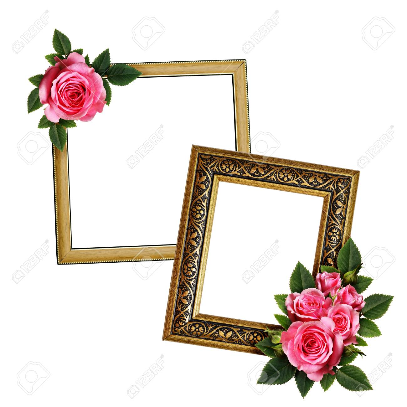 Rosa Rose Blumen Anordnung Auf Rahmen Für Foto Oder Text Isoliert ...