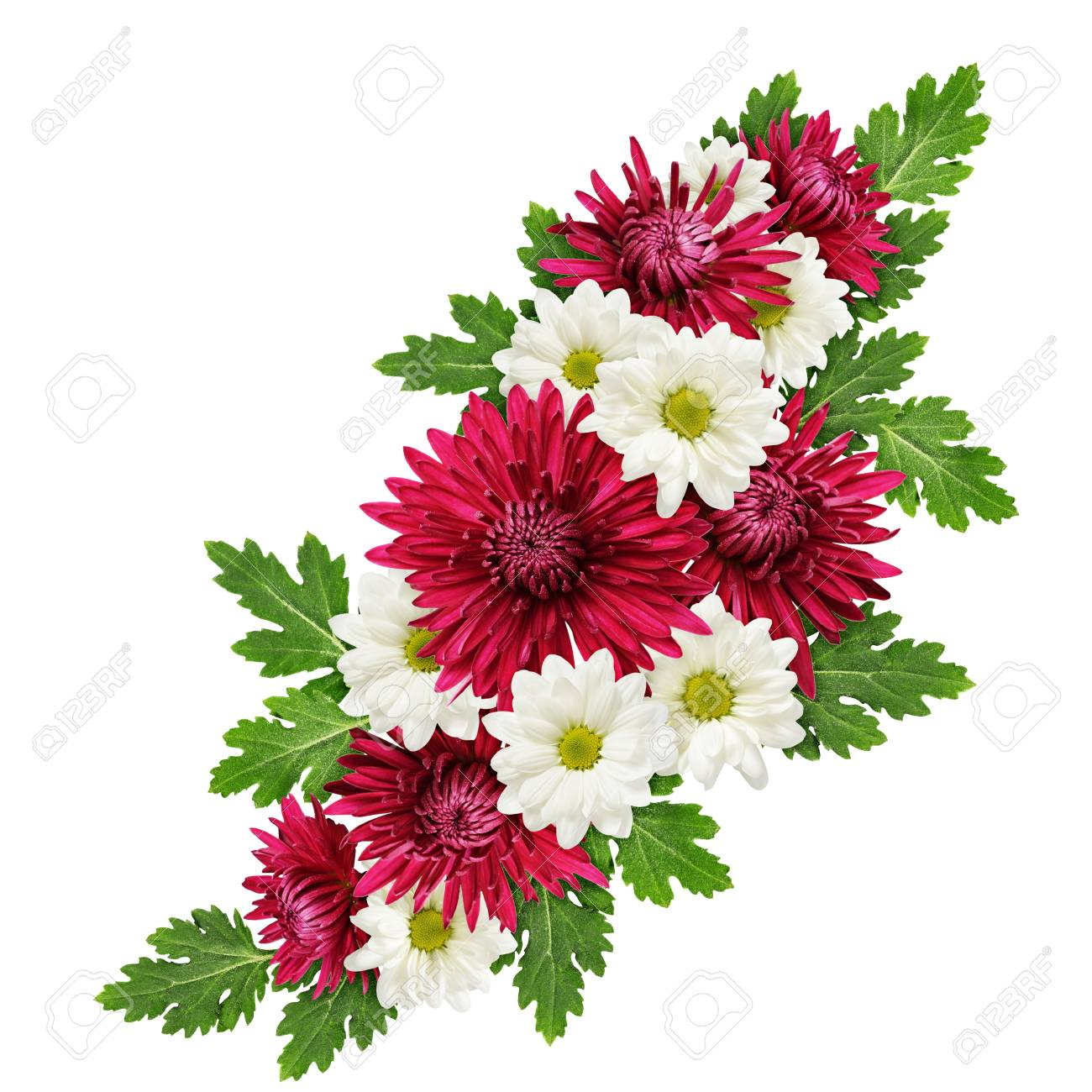 Aster flowers bouquet isolated on white stock photo picture and aster flowers bouquet isolated on white stock photo 63299038 izmirmasajfo