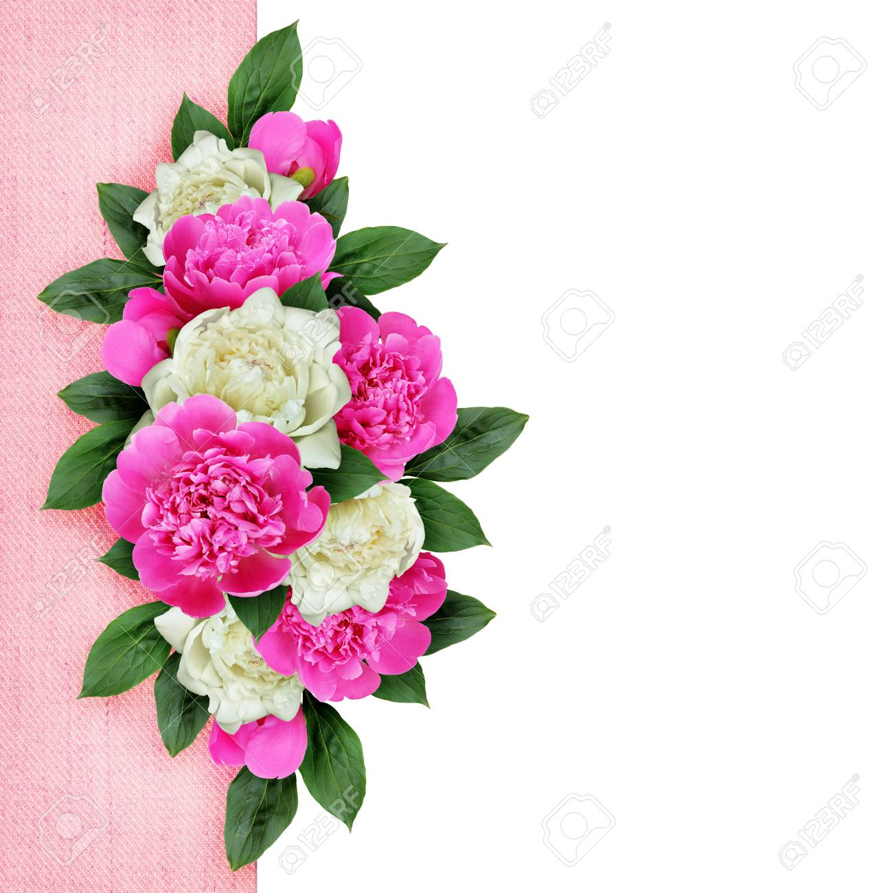 Pink And White Peonies Flowers Arrangement On White And Pink Stock