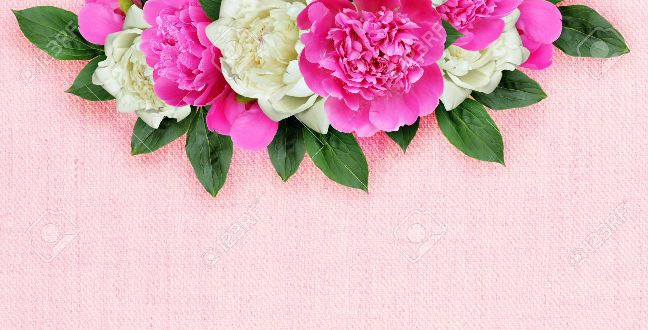 Pink and white peonies flowers arrangement on pink canvas background pink and white peonies flowers arrangement on pink canvas background stock photo 65318277 mightylinksfo