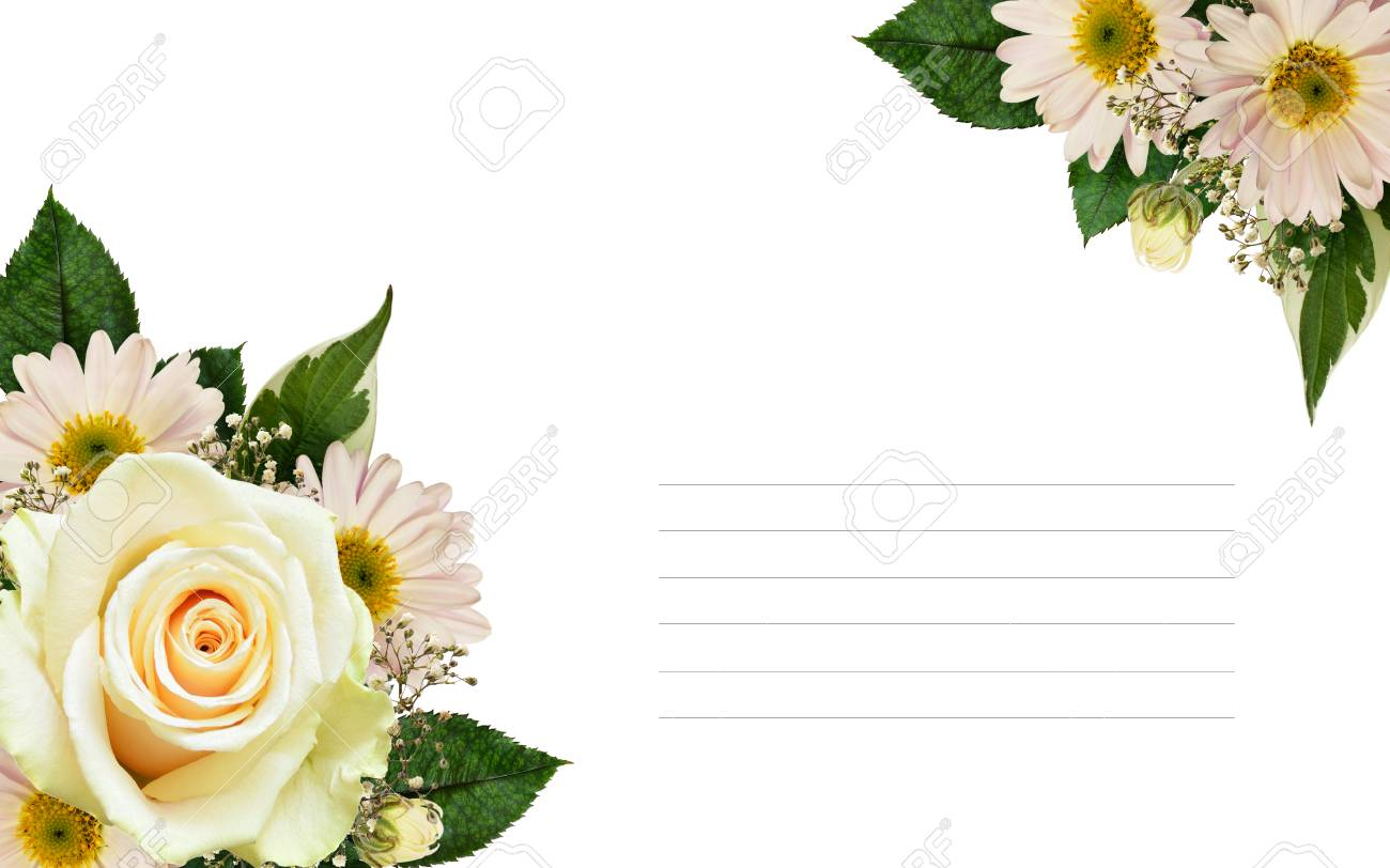 White rose and asters flowers corner arrangements isolated on stock photo white rose and asters flowers corner arrangements isolated on white mightylinksfo