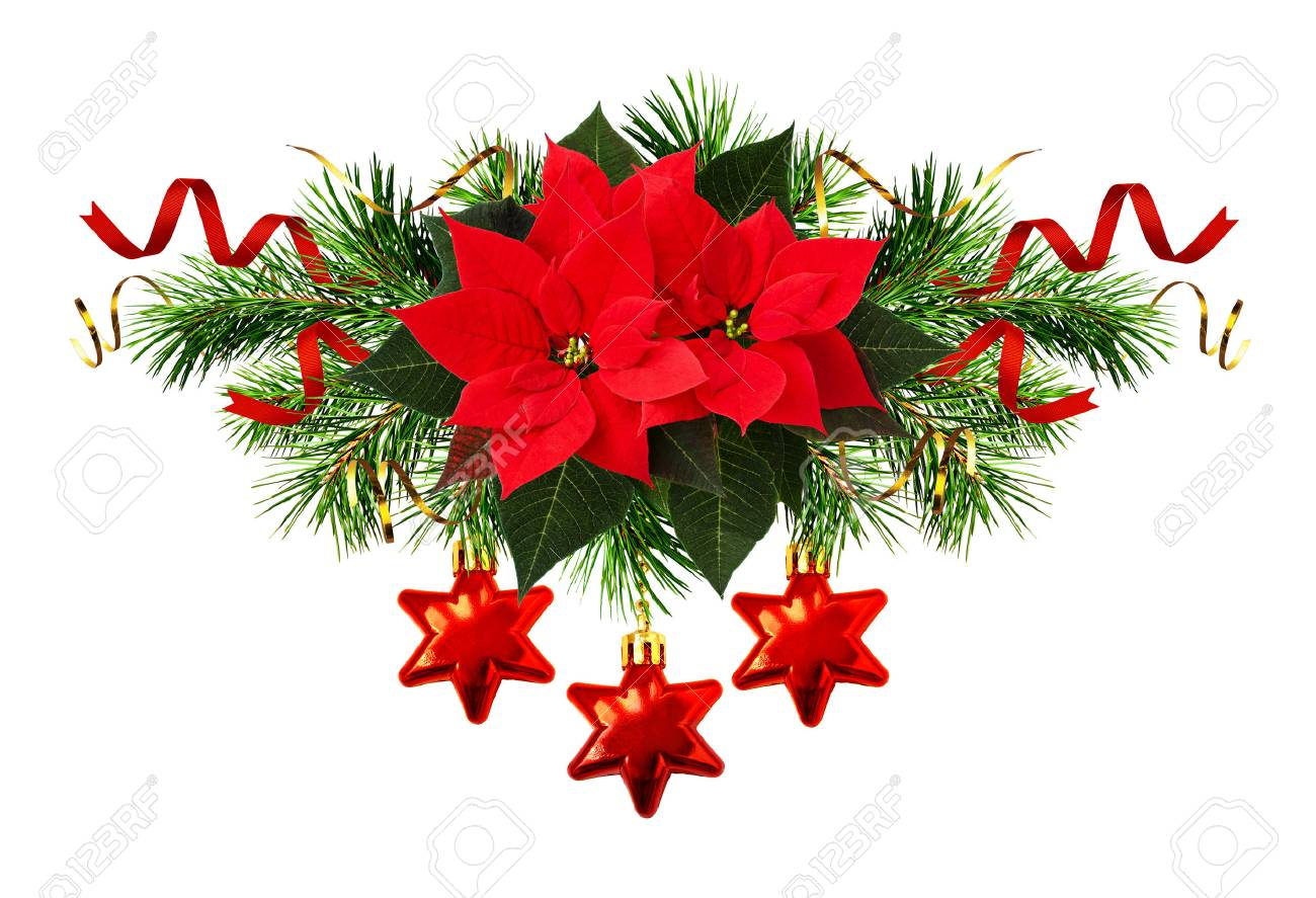 red poinsettia flowers and christmas decorations in holiday arrangement isolated on white stock photo 80617058