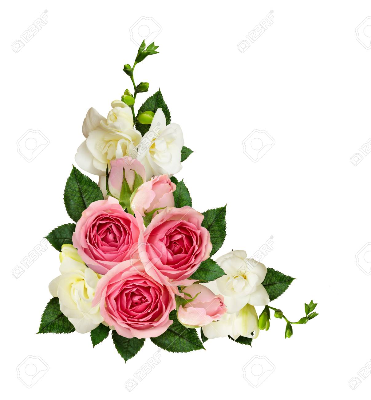 Pink roses and freesia flowers and buds in a corner arrangement pink roses and freesia flowers and buds in a corner arrangement isolated on white background mightylinksfo