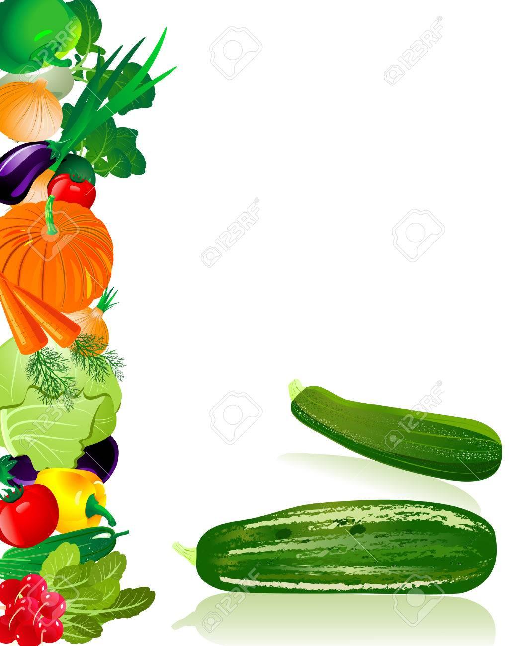 zucchini Stock Vector - 6794400