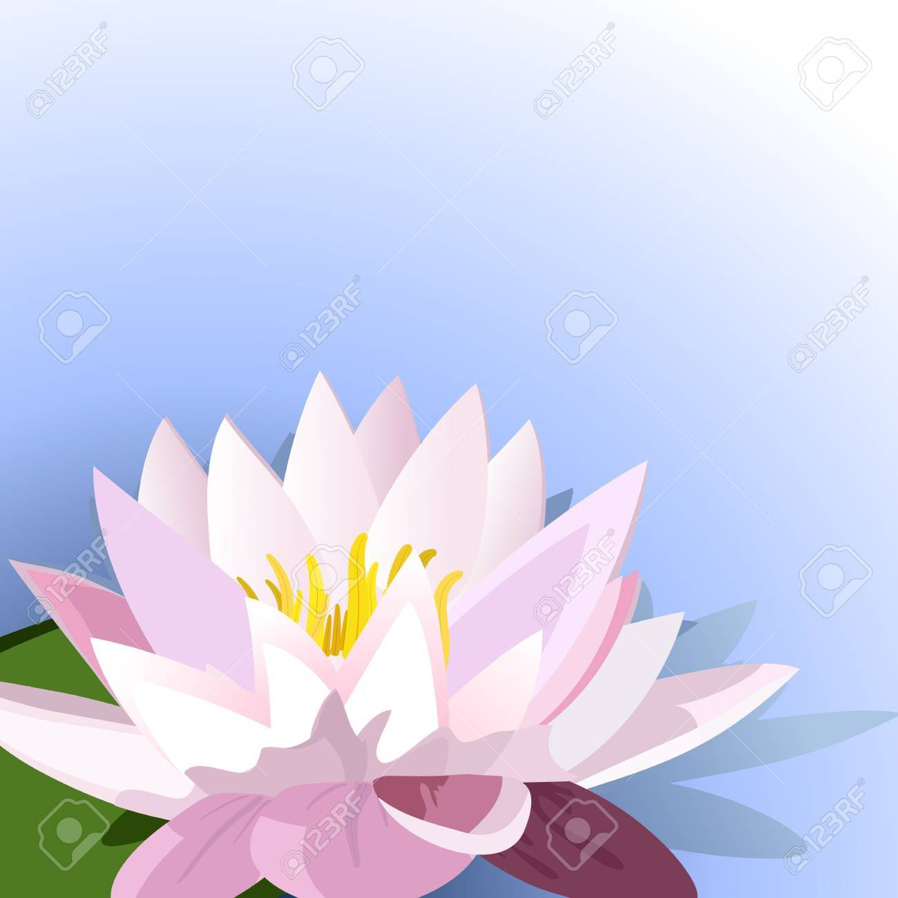 decoration of lilies on the water Stock Vector - 10082030
