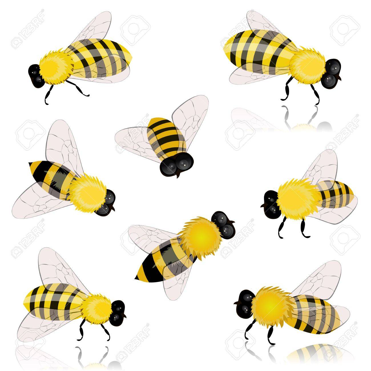 insects bees Stock Vector - 12344706
