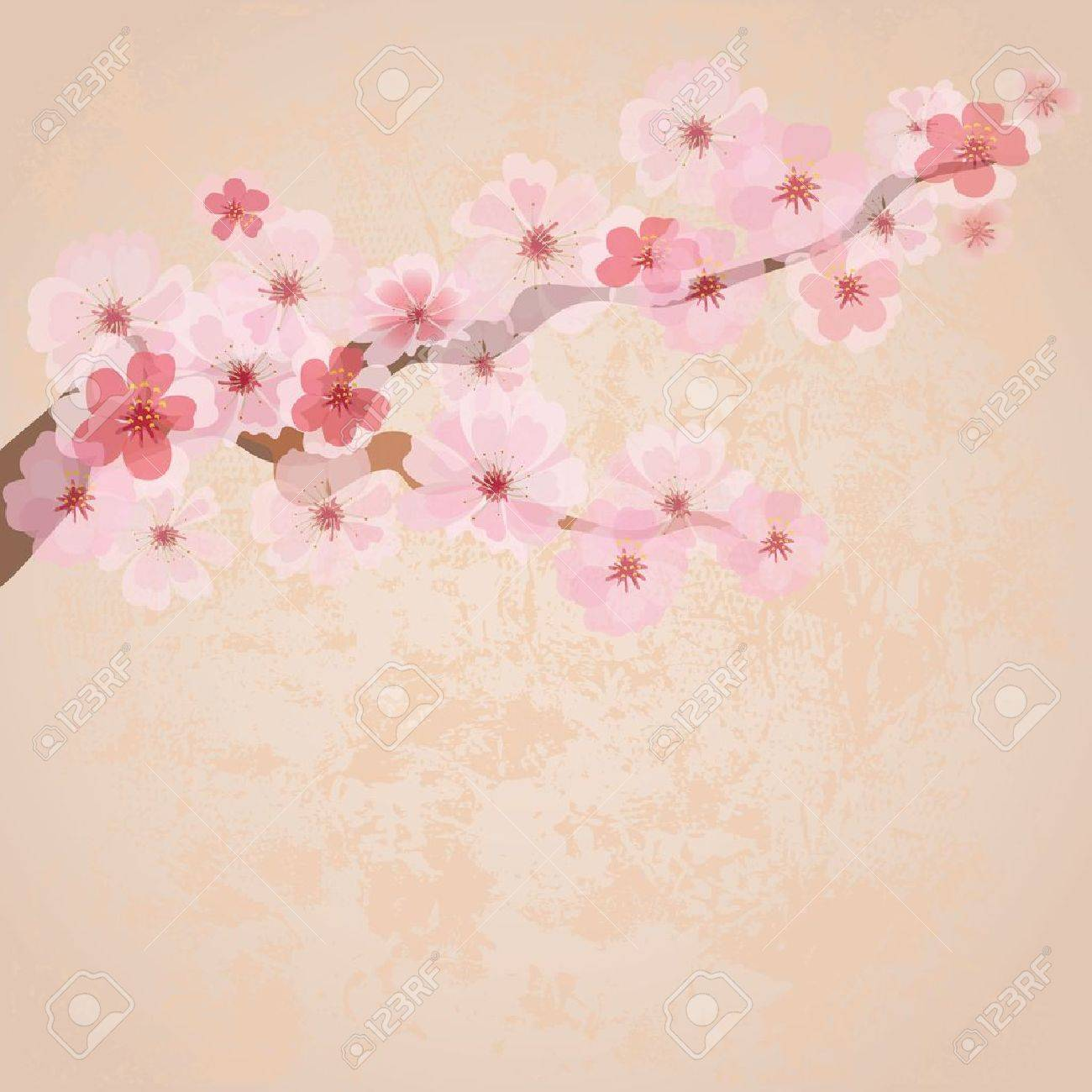 Cherry Blossoms on Paper
