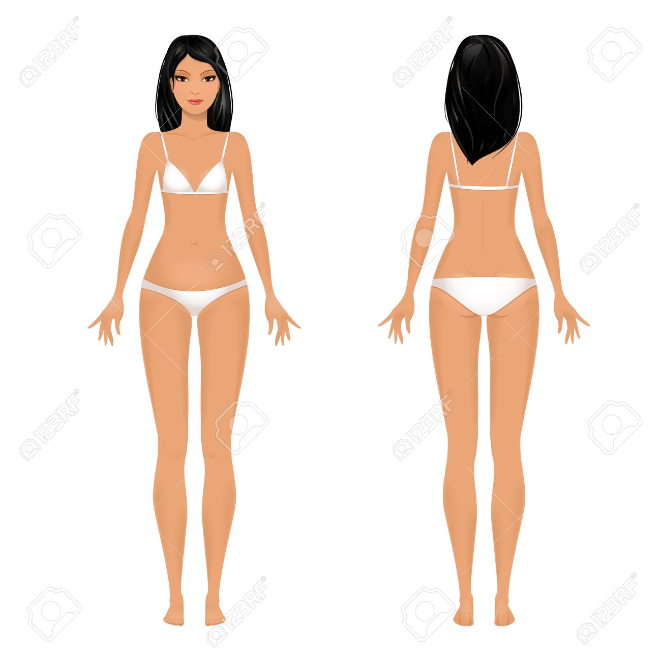 Female body template front and back. - 25955620