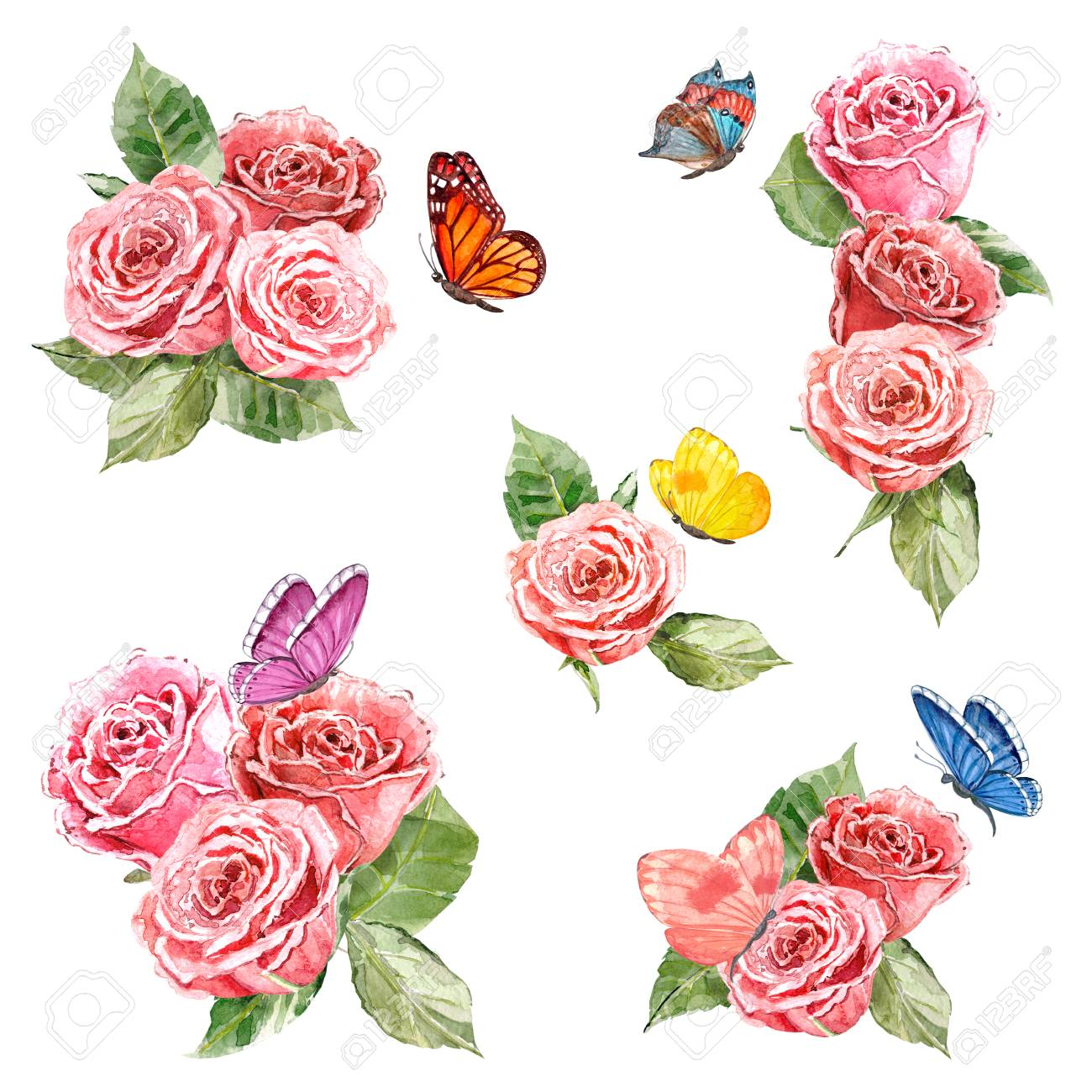 collection of lovely roses and flying butterflies. watercolor