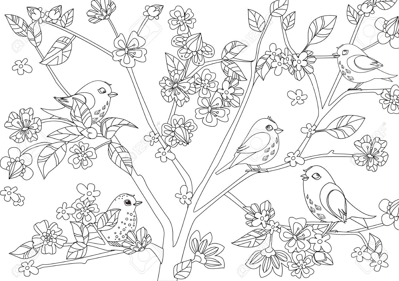 little birds on tree of blossom cherry for your coloring page