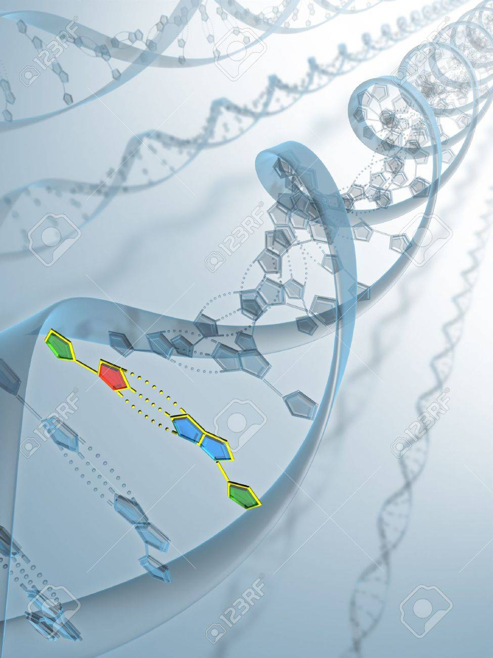Frame of DNA with your structure of connection Stock Photo - 1425297