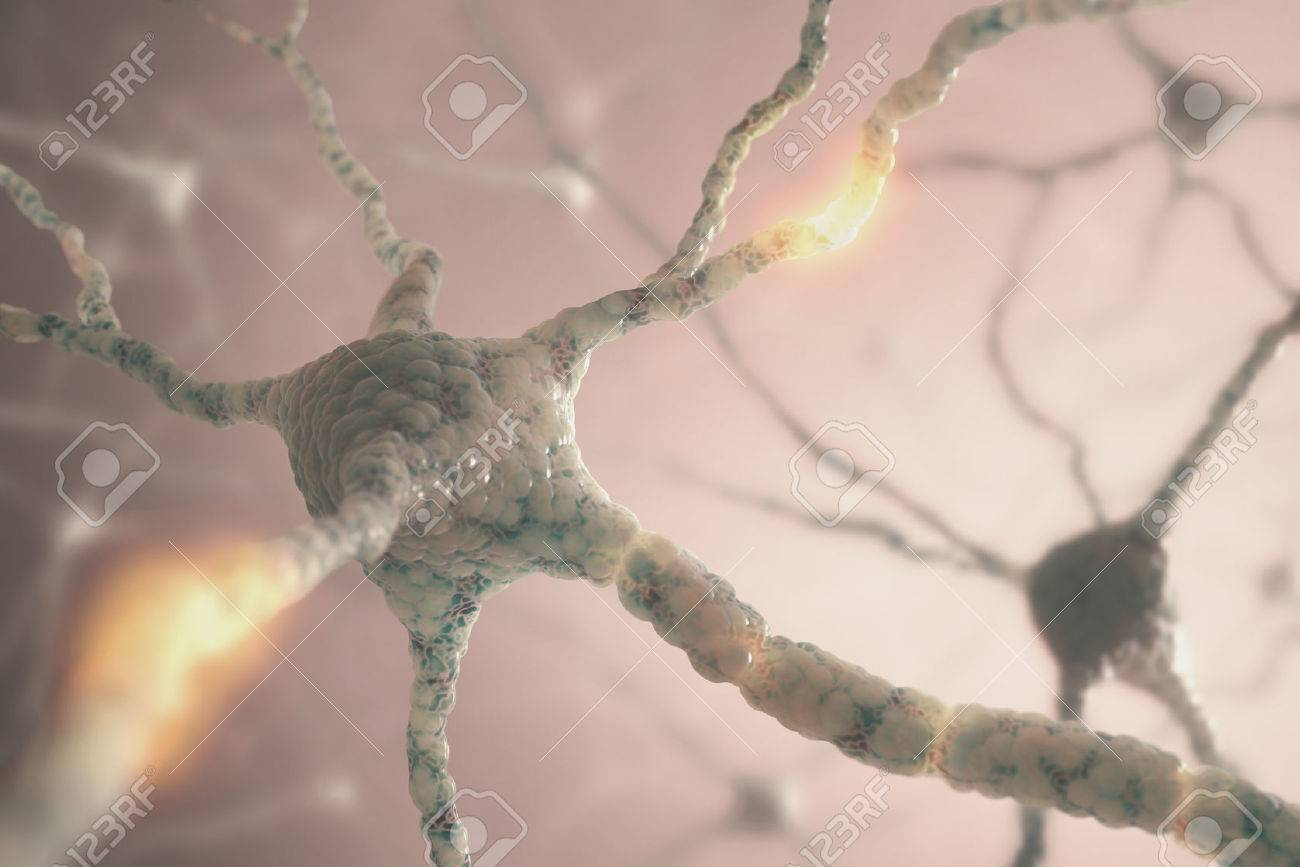 Image concept of neurons from the human brain. - 26790918
