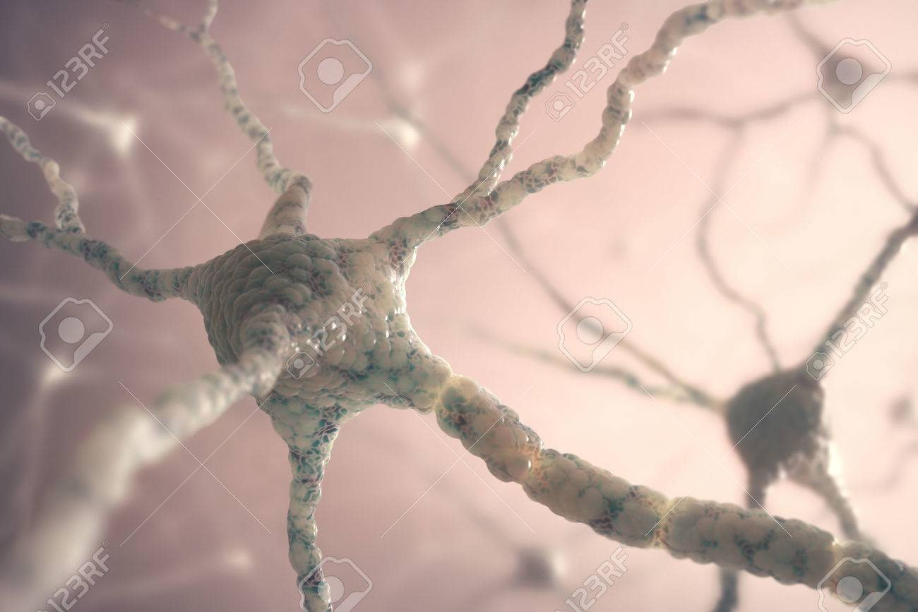 Image concept of neurons from the human brain. - 26790919