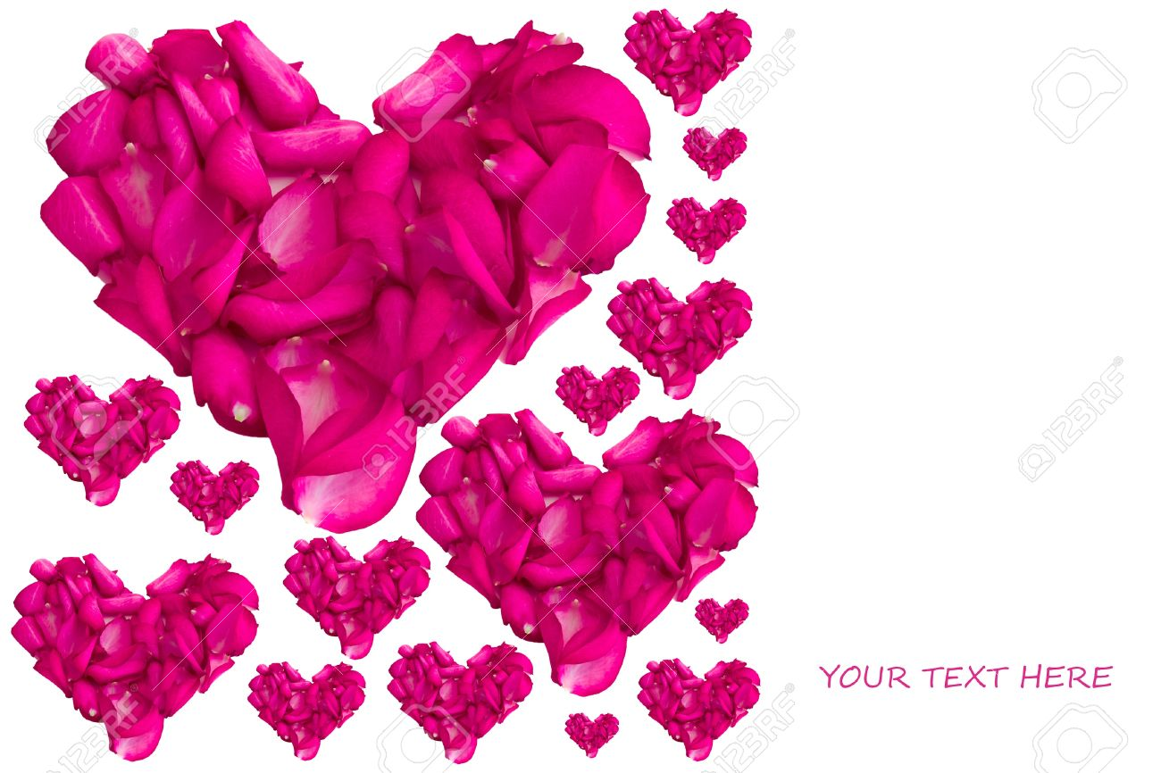 valentine card with heart shaped rose petals stock photo picture